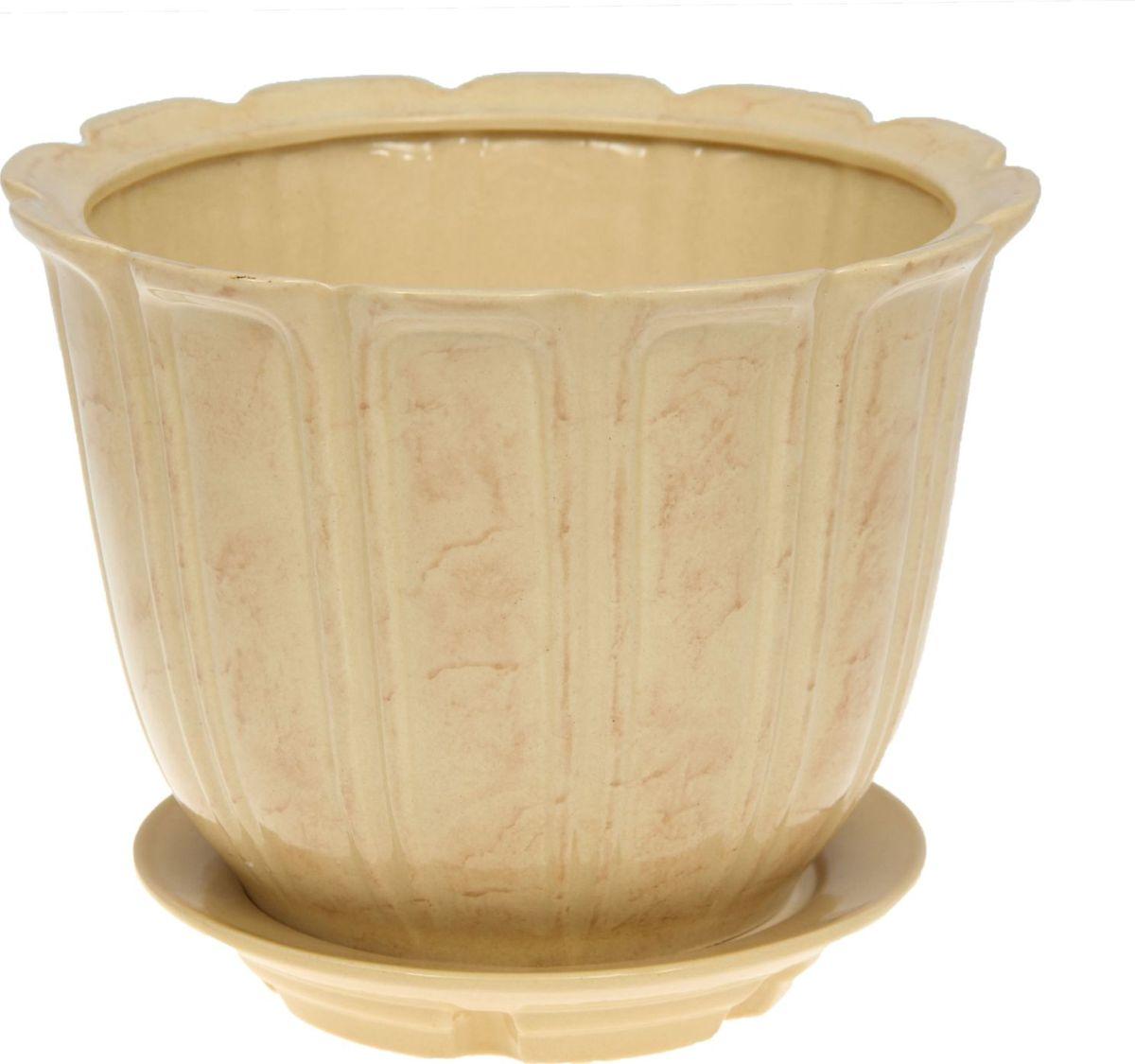 Кашпо Элита, цвет: бежевый, 5,5 л1136702Комнатные растения — всеобщие любимцы. Они радуют глаз, насыщают помещение кислородом и украшают пространство. Каждому из них необходим свой удобный и красивый дом. Кашпо из керамики прекрасно подходят для высадки растений: за счёт пластичности глины и разных способов обработки существует великое множество форм и дизайновпористый материал позволяет испаряться лишней влагевоздух, необходимый для дыхания корней, проникает сквозь керамические стенки! #name# позаботится о зелёном питомце, освежит интерьер и подчеркнёт его стиль.