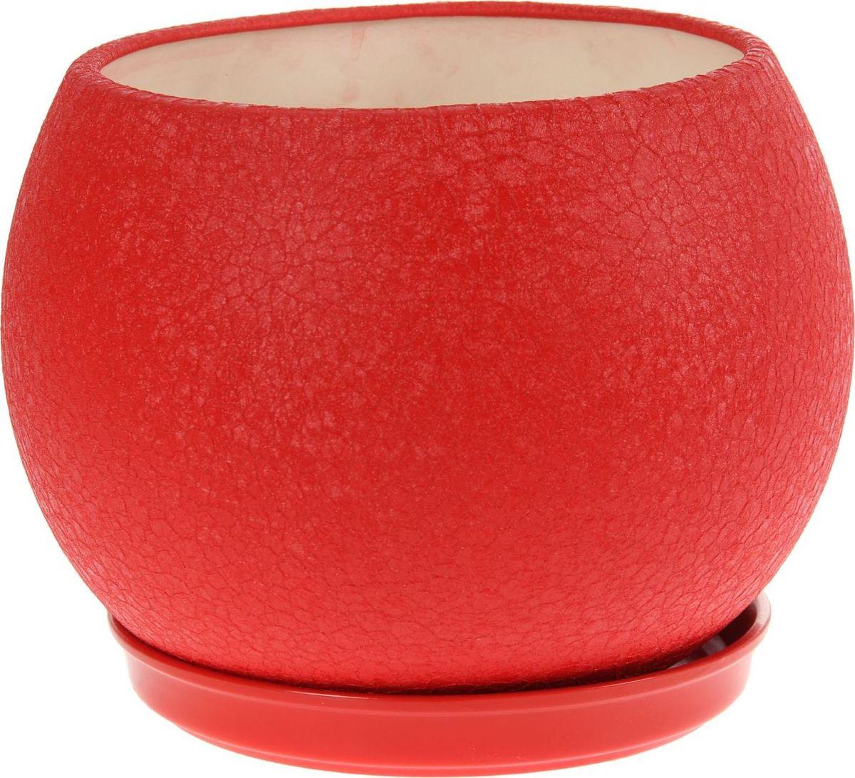 Кашпо Керамика ручной работы Шар, цвет: красный, 9 л1136898Комнатные растения — всеобщие любимцы. Они радуют глаз, насыщают помещение кислородом и украшают пространство. Каждому из них необходим свой удобный и красивый дом. Кашпо из керамики прекрасно подходят для высадки растений: за счет пластичности глины и разных способов обработки существует великое множество форм и дизайнов пористый материал позволяет испаряться лишней влаге воздух, необходимый для дыхания корней, проникает сквозь керамические стенки! позаботится о зеленом питомце, освежит интерьер и подчеркнет его стиль.