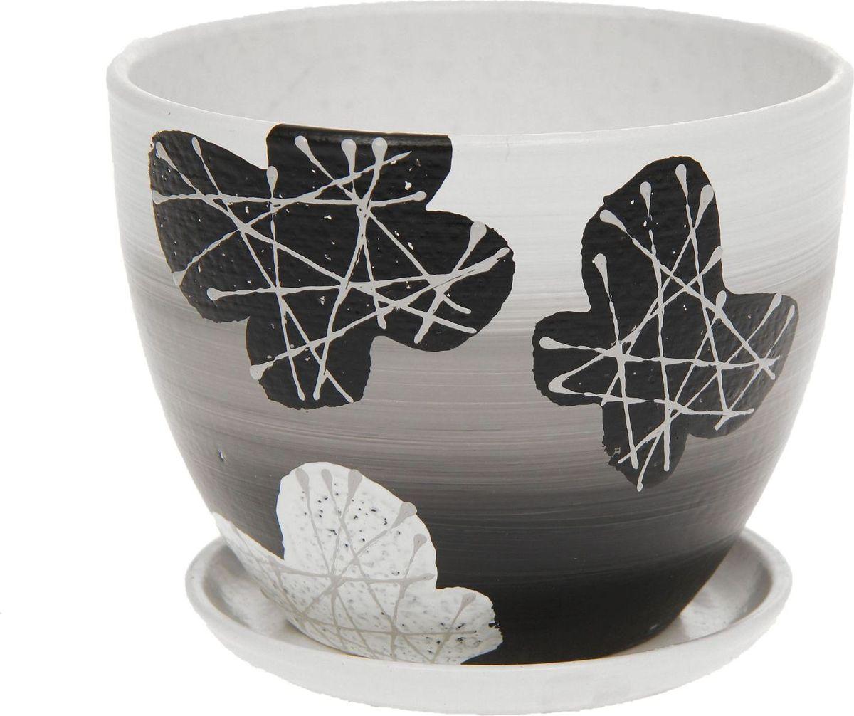 Кашпо Биколор, цвет: черный, белый, 1,1 л1138532Комнатные растения — всеобщие любимцы. Они радуют глаз, насыщают помещение кислородом и украшают пространство. Каждому из них необходим свой удобный и красивый дом. Кашпо из керамики прекрасно подходят для высадки растений: за счёт пластичности глины и разных способов обработки существует великое множество форм и дизайновпористый материал позволяет испаряться лишней влагевоздух, необходимый для дыхания корней, проникает сквозь керамические стенки! #name# позаботится о зелёном питомце, освежит интерьер и подчеркнёт его стиль.