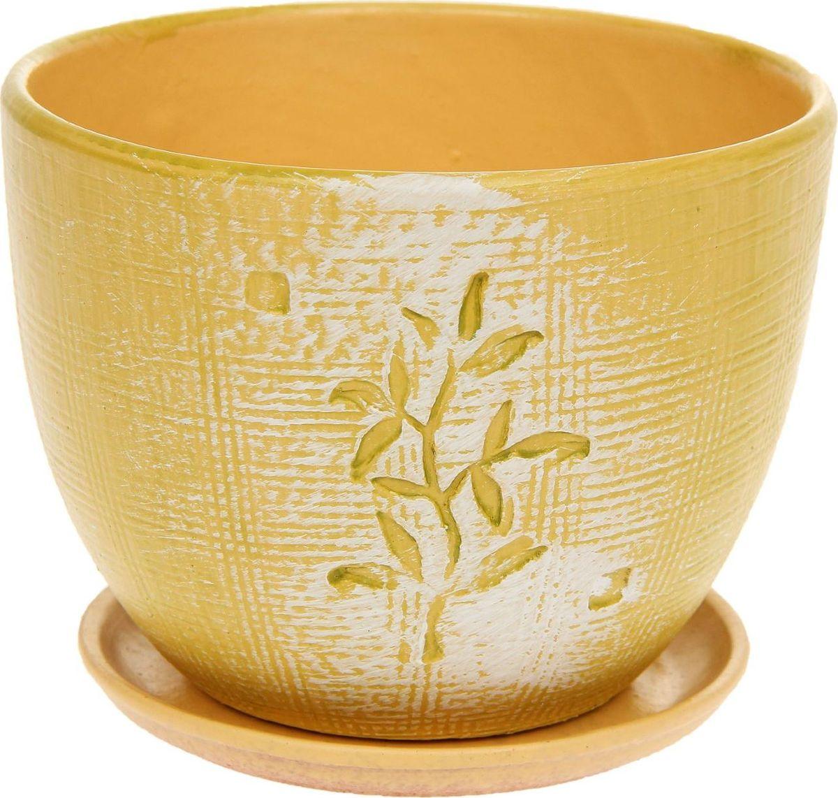 Кашпо Росток, 1,1 л1138690Комнатные растения — всеобщие любимцы. Они радуют глаз, насыщают помещение кислородом и украшают пространство. Каждому из них необходим свой удобный и красивый дом. Кашпо из керамики прекрасно подходят для высадки растений: за счёт пластичности глины и разных способов обработки существует великое множество форм и дизайновпористый материал позволяет испаряться лишней влагевоздух, необходимый для дыхания корней, проникает сквозь керамические стенки! #name# позаботится о зелёном питомце, освежит интерьер и подчеркнёт его стиль.