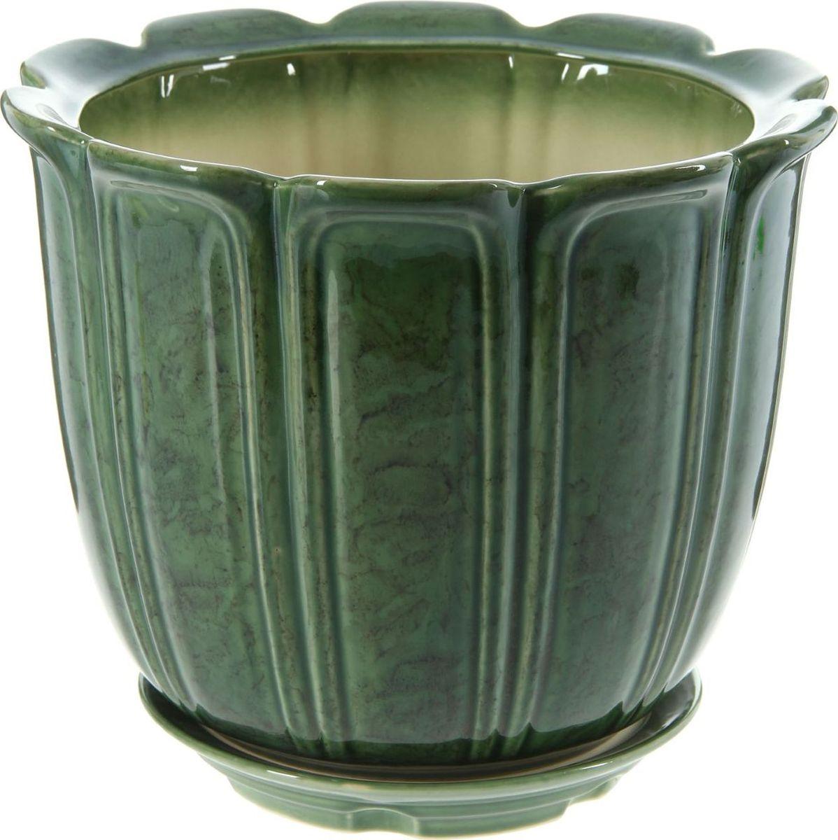 Кашпо Элита, цвет: зеленый, 12 л1143868Комнатные растения — всеобщие любимцы. Они радуют глаз, насыщают помещение кислородом и украшают пространство. Каждому из них необходим свой удобный и красивый дом. Кашпо из керамики прекрасно подходят для высадки растений: за счёт пластичности глины и разных способов обработки существует великое множество форм и дизайновпористый материал позволяет испаряться лишней влагевоздух, необходимый для дыхания корней, проникает сквозь керамические стенки! #name# позаботится о зелёном питомце, освежит интерьер и подчеркнёт его стиль.