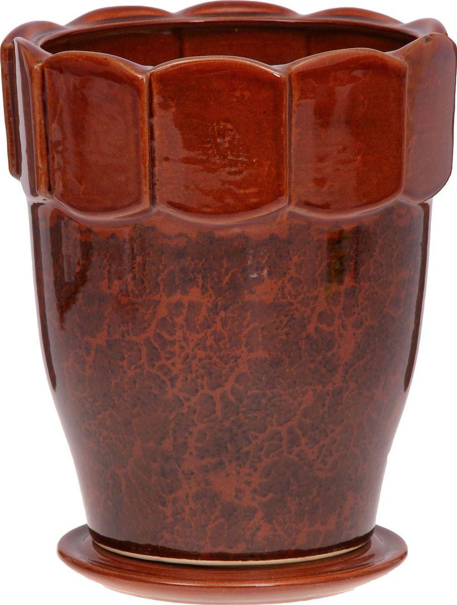 Кашпо Визит, цвет: коричневый, 3,5 л1143902Комнатные растения — всеобщие любимцы. Они радуют глаз, насыщают помещение кислородом и украшают пространство. Каждому из них необходим свой удобный и красивый дом. Кашпо из керамики прекрасно подходят для высадки растений: за счёт пластичности глины и разных способов обработки существует великое множество форм и дизайновпористый материал позволяет испаряться лишней влагевоздух, необходимый для дыхания корней, проникает сквозь керамические стенки! #name# позаботится о зелёном питомце, освежит интерьер и подчеркнёт его стиль.