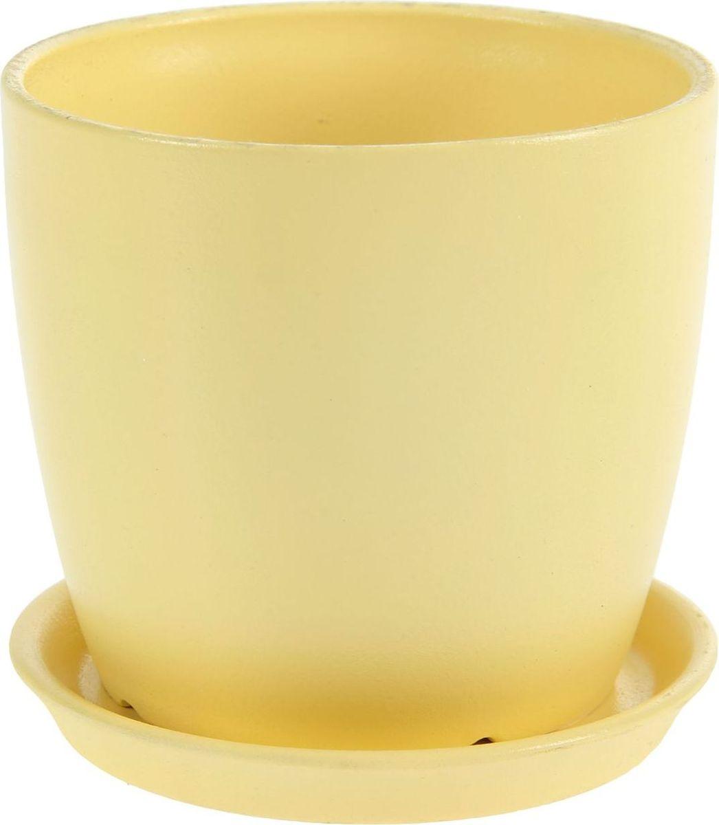 Кашпо Керамика ручной работы Осень. Глянец, цвет: желтый, 0,5 л1144911Комнатные растения — всеобщие любимцы. Они радуют глаз, насыщают помещение кислородом и украшают пространство. Каждому из них необходим свой удобный и красивый дом. Кашпо из керамики прекрасно подходят для высадки растений: за счёт пластичности глины и разных способов обработки существует великое множество форм и дизайновпористый материал позволяет испаряться лишней влагевоздух, необходимый для дыхания корней, проникает сквозь керамические стенки! #name# позаботится о зелёном питомце, освежит интерьер и подчеркнёт его стиль.
