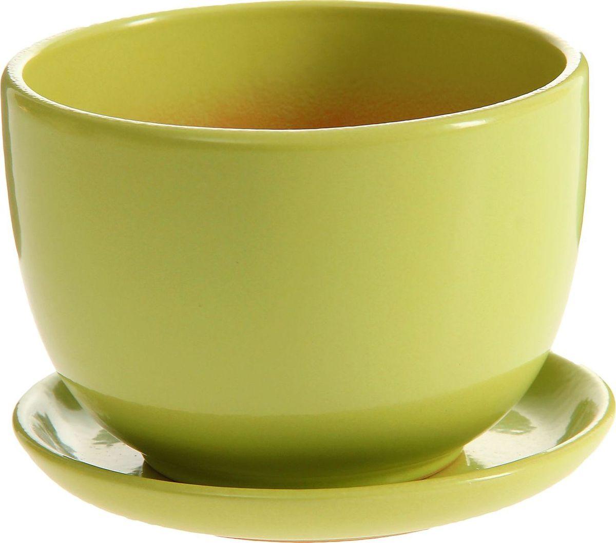 Кашпо Чаша, цвет: салатовый, 0,5 л1157275Комнатные растения — всеобщие любимцы. Они радуют глаз, насыщают помещение кислородом и украшают пространство. Каждому из них необходим свой удобный и красивый дом. Кашпо из керамики прекрасно подходят для высадки растений: за счёт пластичности глины и разных способов обработки существует великое множество форм и дизайновпористый материал позволяет испаряться лишней влагевоздух, необходимый для дыхания корней, проникает сквозь керамические стенки! #name# позаботится о зелёном питомце, освежит интерьер и подчеркнёт его стиль.