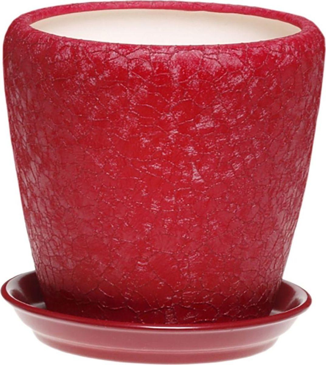 Кашпо Керамика ручной работы Грация, цвет: бордовый, 1,2 л1158459Комнатные растения — всеобщие любимцы. Они радуют глаз, насыщают помещение кислородом и украшают пространство. Каждому из них необходим свой удобный и красивый дом. Кашпо из керамики прекрасно подходят для высадки растений: за счет пластичности глины и разных способов обработки существует великое множество форм и дизайнов пористый материал позволяет испаряться лишней влаге воздух, необходимый для дыхания корней, проникает сквозь керамические стенки! позаботится о зеленом питомце, освежит интерьер и подчеркнет его стиль.