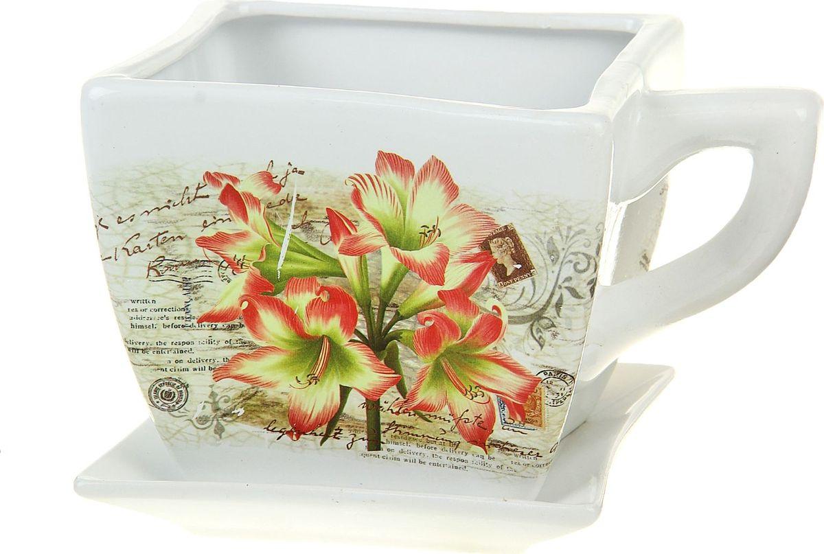 Кашпо Чашка. Альстромерия, 3,5 л135959Комнатные растения — всеобщие любимцы. Они радуют глаз, насыщают помещение кислородом и украшают пространство. Каждому из них необходим свой удобный и красивый дом. Кашпо из керамики прекрасно подходят для высадки растений: за счёт пластичности глины и разных способов обработки существует великое множество форм и дизайновпористый материал позволяет испаряться лишней влагевоздух, необходимый для дыхания корней, проникает сквозь керамические стенки! #name# позаботится о зелёном питомце, освежит интерьер и подчеркнёт его стиль.