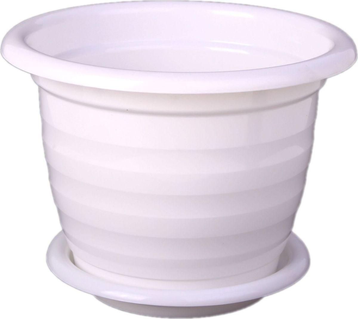 Горшок для цветов Альтернатива Виола, с поддоном, цвет: белый, 3,5 л577744Любой, даже самый современный и продуманный интерьер будет не завершённым без растений. Они не только очищают воздух и насыщают его кислородом, но и заметно украшают окружающее пространство. Такому полезному &laquo члену семьи&raquoпросто необходимо красивое и функциональное кашпо, оригинальный горшок или необычная ваза! Мы предлагаем - Горшок для цветов 3,5 л Виола с поддоном, цвет белый!Оптимальный выбор материала &mdash &nbsp пластмасса! Почему мы так считаем? Малый вес. С лёгкостью переносите горшки и кашпо с места на место, ставьте их на столики или полки, подвешивайте под потолок, не беспокоясь о нагрузке. Простота ухода. Пластиковые изделия не нуждаются в специальных условиях хранения. Их&nbsp легко чистить &mdashдостаточно просто сполоснуть тёплой водой. Никаких царапин. Пластиковые кашпо не царапают и не загрязняют поверхности, на которых стоят. Пластик дольше хранит влагу, а значит &mdashрастение реже нуждается в поливе. Пластмасса не пропускает воздух &mdashкорневой системе растения не грозят резкие перепады температур. Огромный выбор форм, декора и расцветок &mdashвы без труда подберёте что-то, что идеально впишется в уже существующий интерьер.Соблюдая нехитрые правила ухода, вы можете заметно продлить срок службы горшков, вазонов и кашпо из пластика: всегда учитывайте размер кроны и корневой системы растения (при разрастании большое растение способно повредить маленький горшок)берегите изделие от воздействия прямых солнечных лучей, чтобы кашпо и горшки не выцветалидержите кашпо и горшки из пластика подальше от нагревающихся поверхностей.Создавайте прекрасные цветочные композиции, выращивайте рассаду или необычные растения, а низкие цены позволят вам не ограничивать себя в выборе.