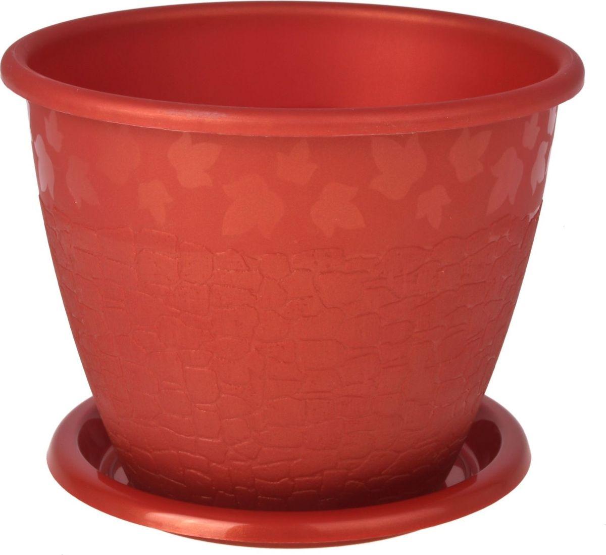 Горшок для цветов Альтернатива Розалия, с поддоном, цвет: медный, 1,2 л577759Любой, даже самый современный и продуманный интерьер будет не завершенным без растений. Они не только очищают воздух и насыщают его кислородом, но и заметно украшают окружающее пространство. Такому полезному члену семьи просто необходимо красивое и функциональное кашпо, оригинальный горшок или необычная ваза! Горшок с поддоном Альтернатива Розалия выполнен из пластика. Пластиковые изделия не нуждаются в специальных условиях хранения. Их легко чистить, достаточно просто сполоснуть теплой водой. Пластиковые кашпо не царапают и не загрязняют поверхности, на которых стоят. Пластик дольше хранит влагу, а значит растение реже нуждается в поливе.