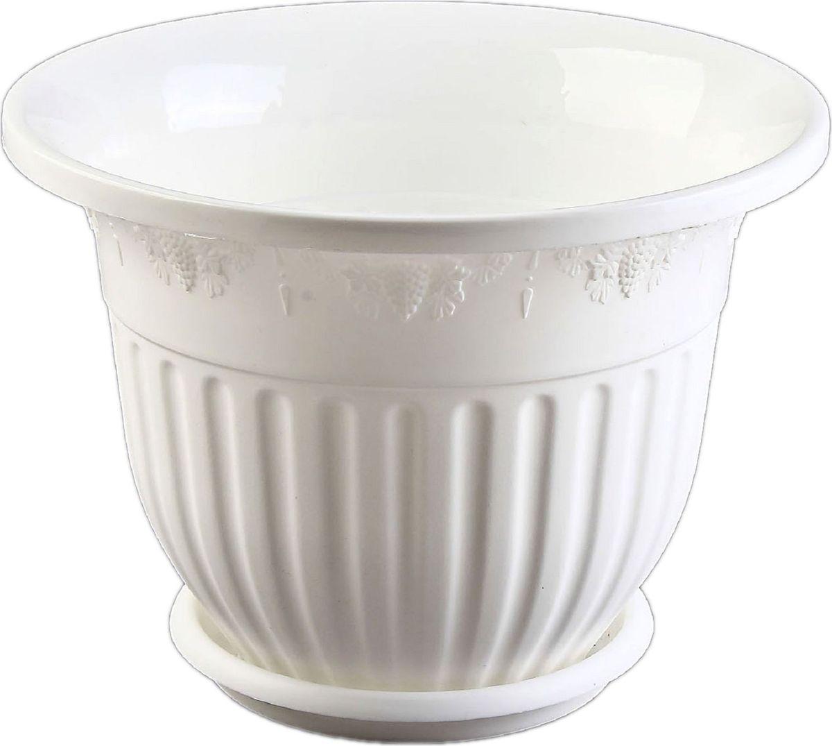 Кашпо Альтернатива Лозанна, с поддоном, цвет: белый, 3 л577788Любой, даже самый современный и продуманный интерьер будет не завершённым без растений. Они не только очищают воздух и насыщают его кислородом, но и заметно украшают окружающее пространство. Такому полезному &laquo члену семьи&raquoпросто необходимо красивое и функциональное кашпо, оригинальный горшок или необычная ваза! Мы предлагаем - Горшок-кашпо 3 л Лозанна, поддон, цвет белый!Оптимальный выбор материала &mdash &nbsp пластмасса! Почему мы так считаем? Малый вес. С лёгкостью переносите горшки и кашпо с места на место, ставьте их на столики или полки, подвешивайте под потолок, не беспокоясь о нагрузке. Простота ухода. Пластиковые изделия не нуждаются в специальных условиях хранения. Их&nbsp легко чистить &mdashдостаточно просто сполоснуть тёплой водой. Никаких царапин. Пластиковые кашпо не царапают и не загрязняют поверхности, на которых стоят. Пластик дольше хранит влагу, а значит &mdashрастение реже нуждается в поливе. Пластмасса не пропускает воздух &mdashкорневой системе растения не грозят резкие перепады температур. Огромный выбор форм, декора и расцветок &mdashвы без труда подберёте что-то, что идеально впишется в уже существующий интерьер.Соблюдая нехитрые правила ухода, вы можете заметно продлить срок службы горшков, вазонов и кашпо из пластика: всегда учитывайте размер кроны и корневой системы растения (при разрастании большое растение способно повредить маленький горшок)берегите изделие от воздействия прямых солнечных лучей, чтобы кашпо и горшки не выцветалидержите кашпо и горшки из пластика подальше от нагревающихся поверхностей.Создавайте прекрасные цветочные композиции, выращивайте рассаду или необычные растения, а низкие цены позволят вам не ограничивать себя в выборе.