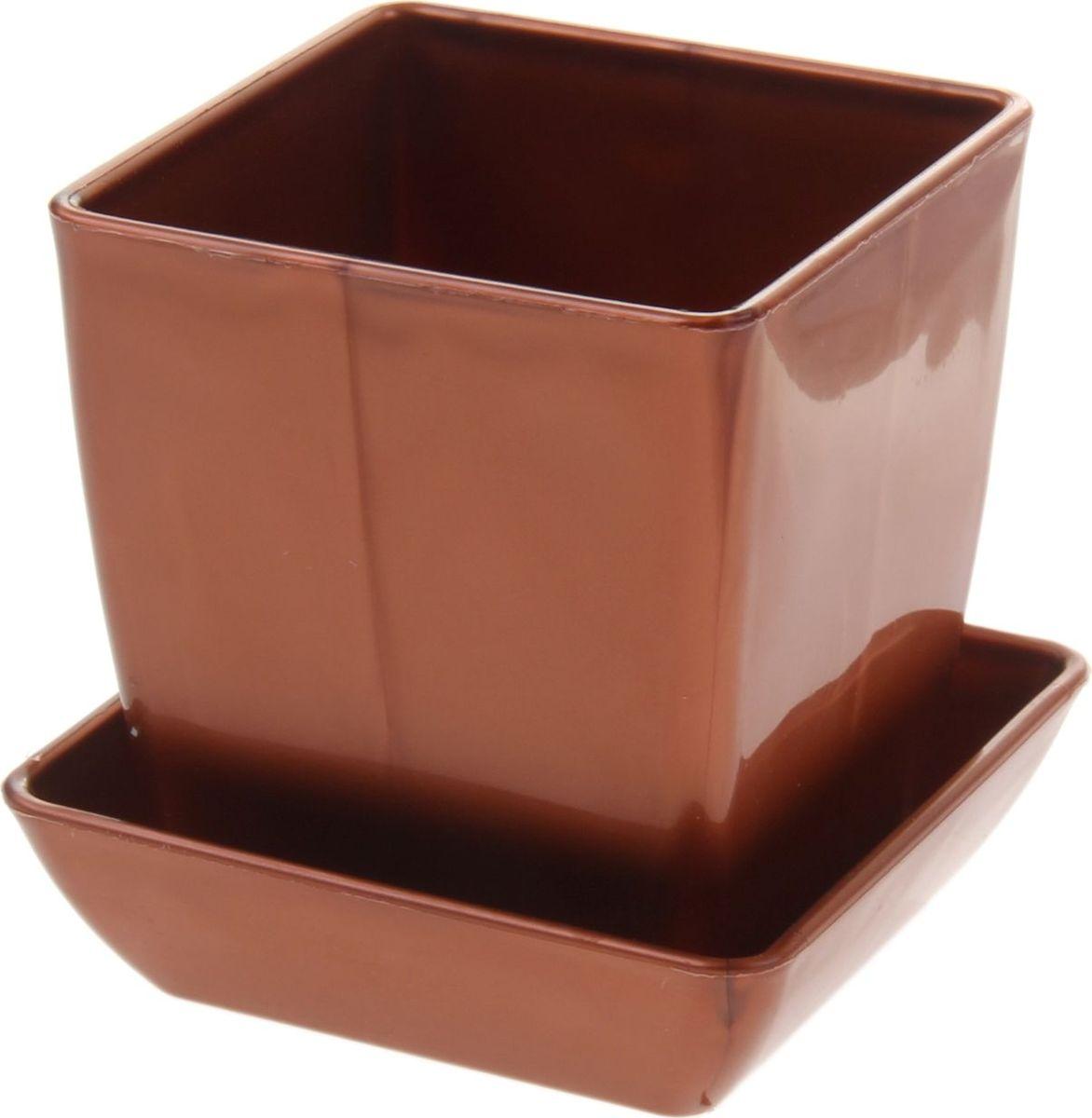 Горшок для цветов Мегапласт Квадрат, с поддоном, цвет: медный, 0,3 л651040Горшок для цветов Мегапласт Квадрат обладает малым весом и высокой прочностью. С лёгкостью переносите горшки и кашпо с места на место, ставьте их на столики или полки, подвешивайте под потолок, не беспокоясь о нагрузке. Пластиковые изделия не нуждаются в специальных условиях хранения. Их легко чистить - достаточно просто сполоснуть тёплой водой. Пластиковые кашпо не царапают и не загрязняют поверхности, на которых стоят. Пластик дольше хранит влагу, а значит растение реже нуждается в поливе.Пластмасса не пропускает воздух, а значит, корневой системе растения не грозят резкие перепады температур. Соблюдая нехитрые правила ухода, вы можете заметно продлить срок службы горшков, вазонов и кашпо из пластика:- всегда учитывайте размер кроны и корневой системы растения (при разрастании большое растение способно повредить маленький горшок). - берегите изделие от воздействия прямых солнечных лучей, чтобы кашпо и горшки не выцветали. - держите кашпо и горшки из пластика подальше от нагревающихся поверхностей. Любой, даже самый современный и продуманный интерьер будет не завершённым без растений. Они не только очищают воздух и насыщают его кислородом, но и заметно украшают окружающее пространство. Такому полезному члену семьи просто необходимо красивое и функциональное кашпо, оригинальный горшок или необычная ваза!