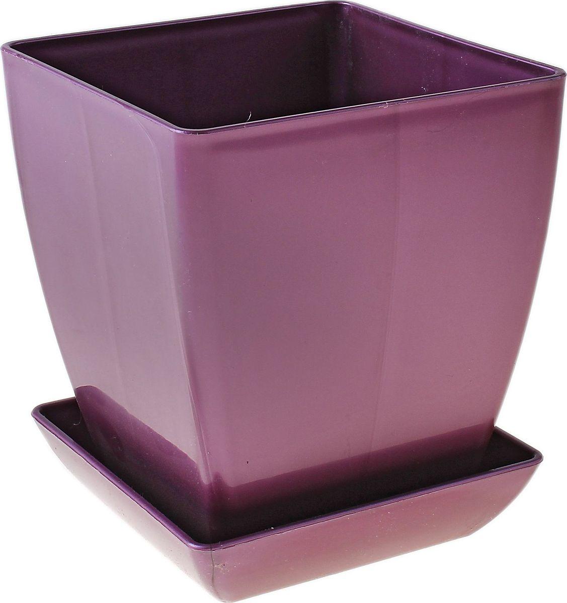 Горшок для цветов Мегапласт Квадрат, с поддоном, цвет: фиолетовый, 1,5 л651042Горшок для цветов Мегапласт Квадрат обладает малым весом и высокой прочностью. С лёгкостью переносите горшки и кашпо с места на место, ставьте их на столики или полки, подвешивайте под потолок, не беспокоясь о нагрузке. Пластиковые изделия не нуждаются в специальных условиях хранения. Их легко чистить - достаточно просто сполоснуть тёплой водой.Пластиковые кашпо не царапают и не загрязняют поверхности, на которых стоят. Пластик дольше хранит влагу, а значит растение реже нуждается в поливе.Пластмасса не пропускает воздух, а значит, корневой системе растения не грозят резкие перепады температур. Соблюдая нехитрые правила ухода, вы можете заметно продлить срок службы горшков, вазонов и кашпо из пластика:- всегда учитывайте размер кроны и корневой системы растения (при разрастании большое растение способно повредить маленький горшок). - берегите изделие от воздействия прямых солнечных лучей, чтобы кашпо и горшки не выцветали. - держите кашпо и горшки из пластика подальше от нагревающихся поверхностей. Любой, даже самый современный и продуманный интерьер будет не завершённым без растений. Они не только очищают воздух и насыщают его кислородом, но и заметно украшают окружающее пространство. Такому полезному члену семьи просто необходимо красивое и функциональное кашпо, оригинальный горшок или необычная ваза!