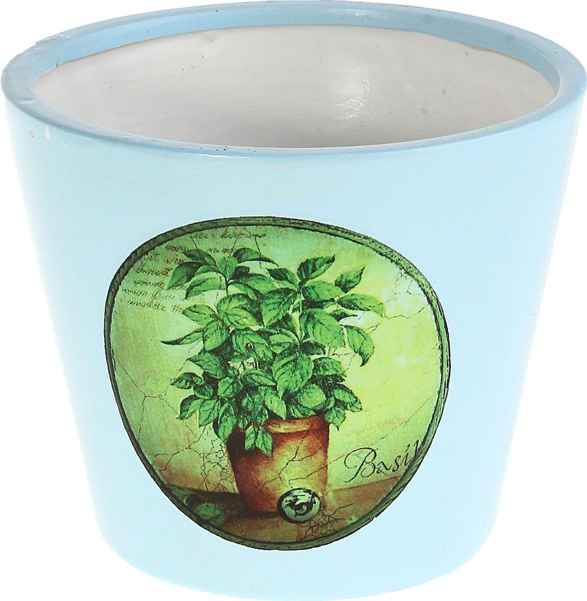 Кашпо Базилик, цвет: голубой, 10 х 15 х 12 см829764Комнатные растения — всеобщие любимцы. Они радуют глаз, насыщают помещение кислородом и украшают пространство. Каждому из них необходим свой удобный и красивый дом. Кашпо из керамики прекрасно подходят для высадки растений: за счёт пластичности глины и разных способов обработки существует великое множество форм и дизайновпористый материал позволяет испаряться лишней влагевоздух, необходимый для дыхания корней, проникает сквозь керамические стенки! #name# позаботится о зелёном питомце, освежит интерьер и подчеркнёт его стиль.