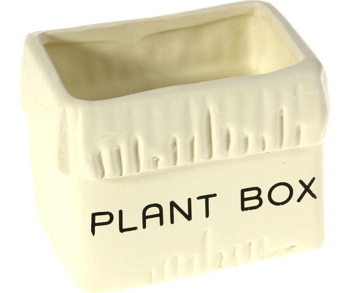 Кашпо Картонная коробка, цвет: белый, 8 х 11 х 8 см829926Комнатные растения — всеобщие любимцы. Они радуют глаз, насыщают помещение кислородом и украшают пространство. Каждому из них необходим свой удобный и красивый дом. Кашпо из керамики прекрасно подходят для высадки растений: за счёт пластичности глины и разных способов обработки существует великое множество форм и дизайновпористый материал позволяет испаряться лишней влагевоздух, необходимый для дыхания корней, проникает сквозь керамические стенки! #name# позаботится о зелёном питомце, освежит интерьер и подчеркнёт его стиль.