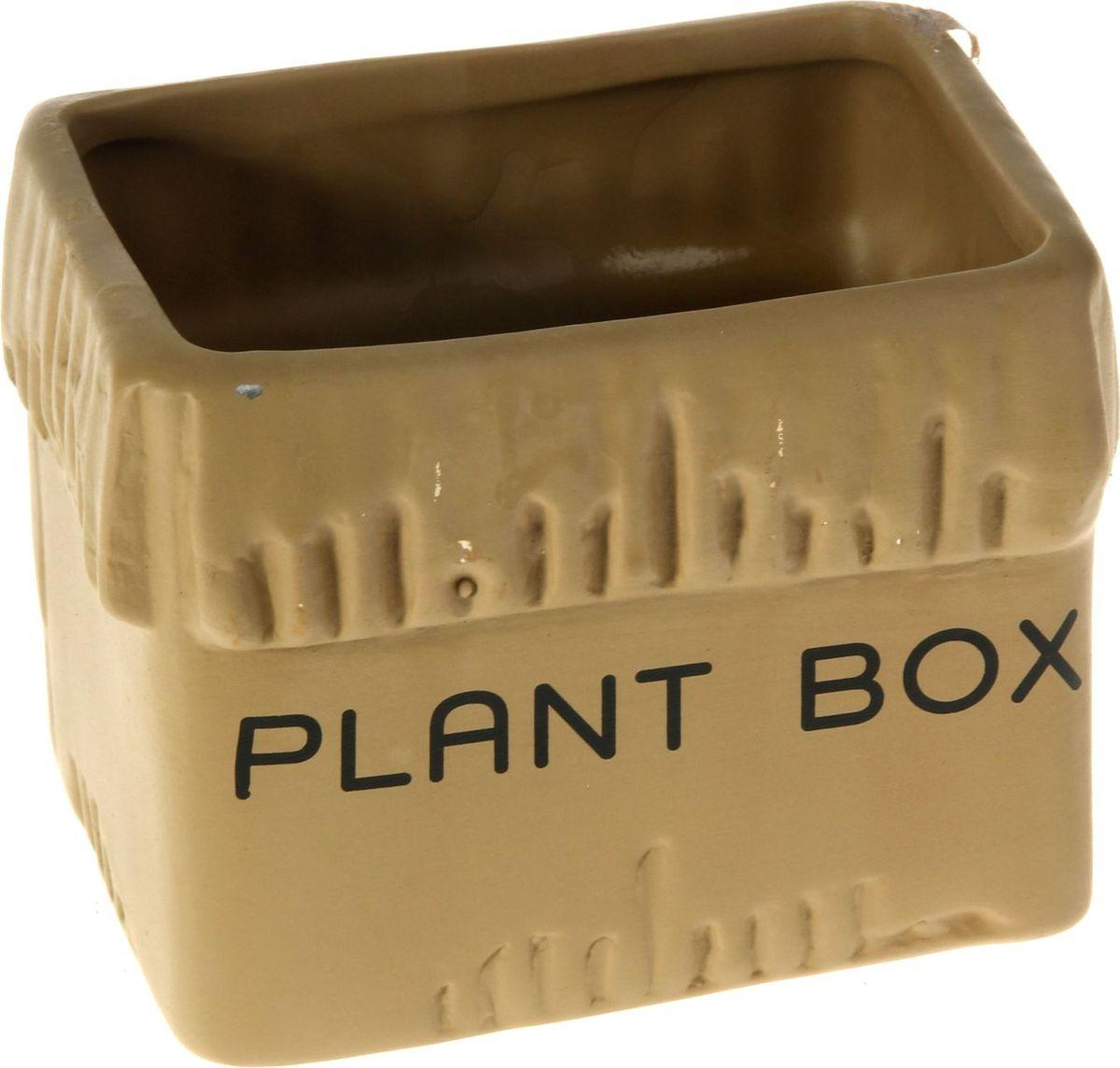 Кашпо Картонная коробка, цвет: коричневый, 8 х 11 х 8 см829927Комнатные растения — всеобщие любимцы. Они радуют глаз, насыщают помещение кислородом и украшают пространство. Каждому из них необходим свой удобный и красивый дом. Кашпо из керамики прекрасно подходят для высадки растений: за счёт пластичности глины и разных способов обработки существует великое множество форм и дизайновпористый материал позволяет испаряться лишней влагевоздух, необходимый для дыхания корней, проникает сквозь керамические стенки! #name# позаботится о зелёном питомце, освежит интерьер и подчеркнёт его стиль.