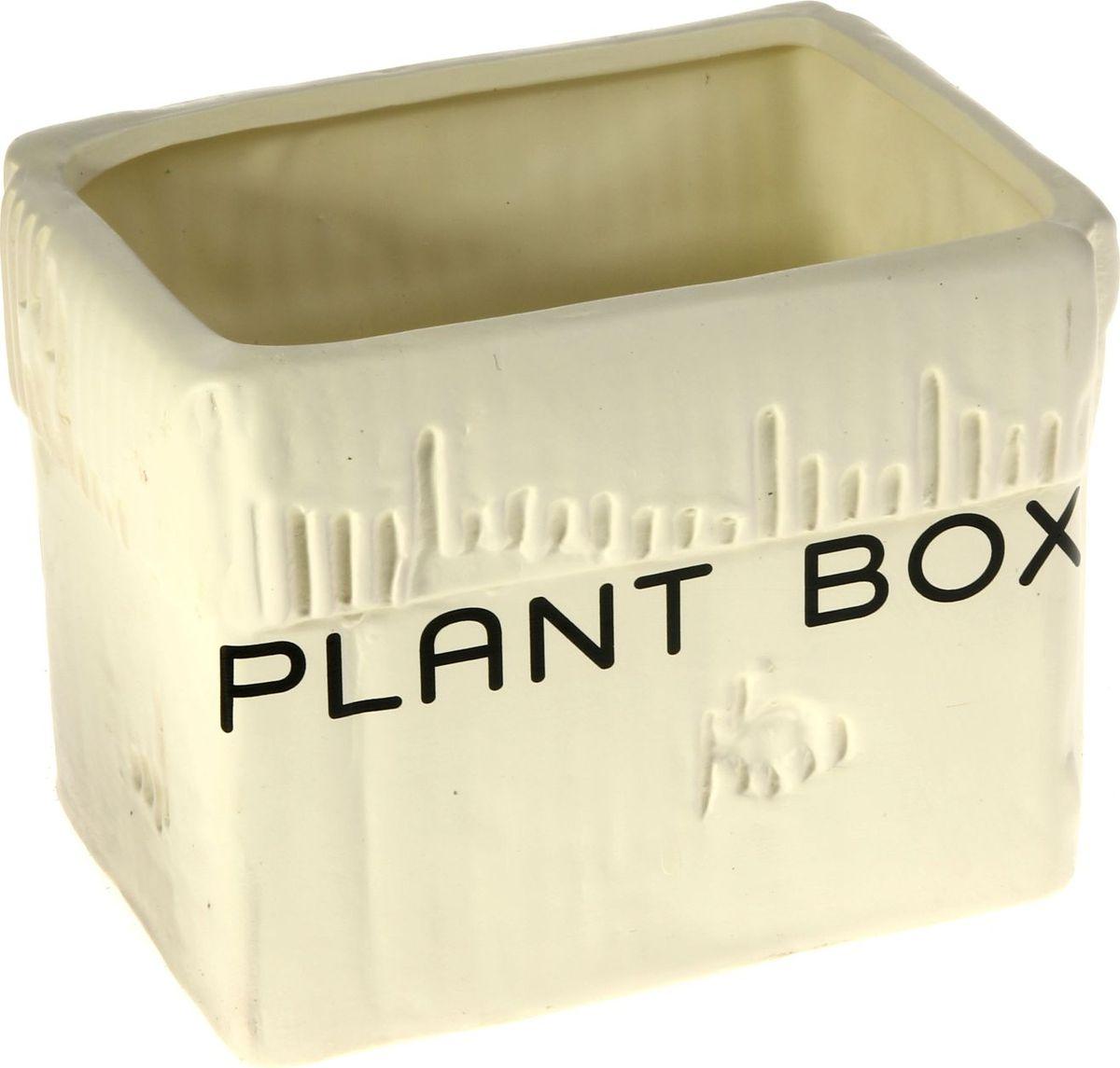 Кашпо Картонная коробка, цвет: белый, 13 х 17 х 13 см829930Комнатные растения — всеобщие любимцы. Они радуют глаз, насыщают помещение кислородом и украшают пространство. Каждому из них необходим свой удобный и красивый дом. Кашпо из керамики прекрасно подходят для высадки растений: за счёт пластичности глины и разных способов обработки существует великое множество форм и дизайновпористый материал позволяет испаряться лишней влагевоздух, необходимый для дыхания корней, проникает сквозь керамические стенки! #name# позаботится о зелёном питомце, освежит интерьер и подчеркнёт его стиль.