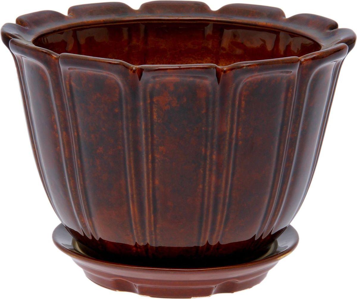 Кашпо Элита, цвет: коричневый, 12 л838651Комнатные растения — всеобщие любимцы. Они радуют глаз, насыщают помещение кислородом и украшают пространство. Каждому из них необходим свой удобный и красивый дом. Кашпо из керамики прекрасно подходят для высадки растений: за счёт пластичности глины и разных способов обработки существует великое множество форм и дизайновпористый материал позволяет испаряться лишней влагевоздух, необходимый для дыхания корней, проникает сквозь керамические стенки! #name# позаботится о зелёном питомце, освежит интерьер и подчеркнёт его стиль.