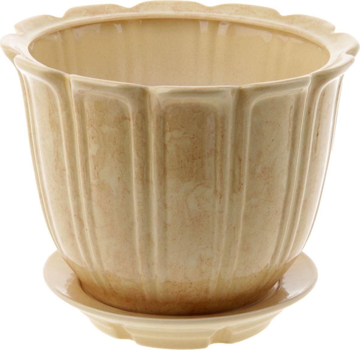 Кашпо Элита, цвет: кремовый, 5,5 л840725Комнатные растения - всеобщие любимцы. Они радуют глаз, насыщают помещение кислородом и украшают пространство. Каждому из них необходим свой удобный и красивый дом. Кашпо из керамики прекрасно подходят для высадки растений: за счет пластичности глины и разных способов обработки существует великое множество форм и дизайнов пористый материал позволяет испаряться лишней влаге воздух, необходимый для дыхания корней, проникает сквозь керамические стенки! Позаботится о зеленом питомце, освежит интерьер и подчеркнет его стиль.
