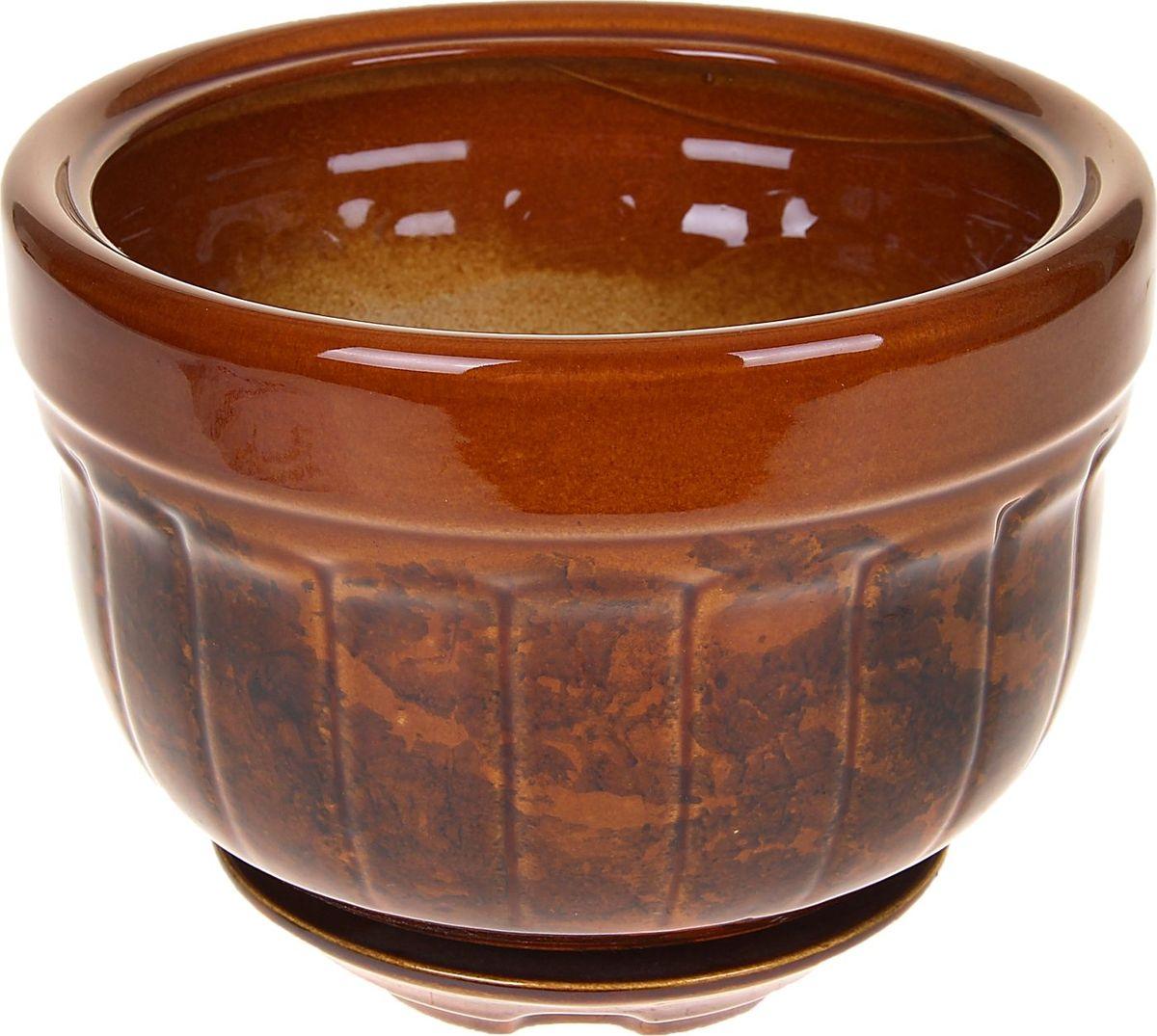 Кашпо Браво, цвет: коричневый, 2,2 л840794Комнатные растения — всеобщие любимцы. Они радуют глаз, насыщают помещение кислородом и украшают пространство. Каждому из них необходим свой удобный и красивый дом. Кашпо из керамики прекрасно подходят для высадки растений: за счёт пластичности глины и разных способов обработки существует великое множество форм и дизайновпористый материал позволяет испаряться лишней влагевоздух, необходимый для дыхания корней, проникает сквозь керамические стенки! #name# позаботится о зелёном питомце, освежит интерьер и подчеркнёт его стиль.