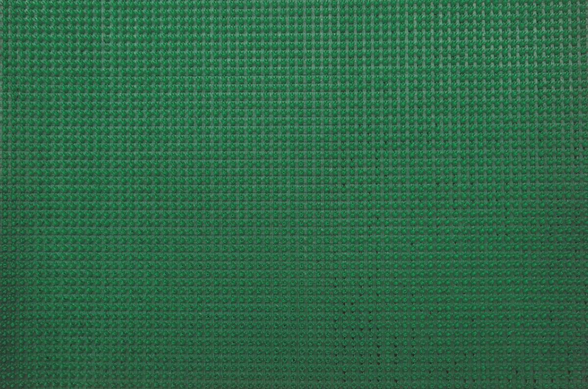 Коврик придверный InLoran, щетинистый, цвет: зеленый, 45 х 60 см40-4561/11163Коврик придверный InLoran выполнен из полиэтилена высокого давления и полипропилена. Изделие обладает щетиной в форме тюльпана, которая эффективно задерживает грязь. Такой коврик надежно защитит помещение от уличной пыли и грязи. Легко чистится и моется.