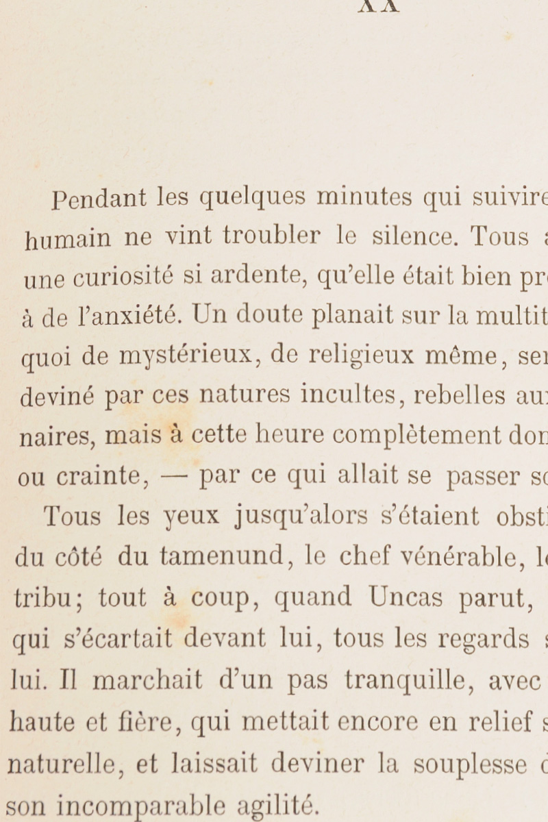 Le Dernier des Mohicans.