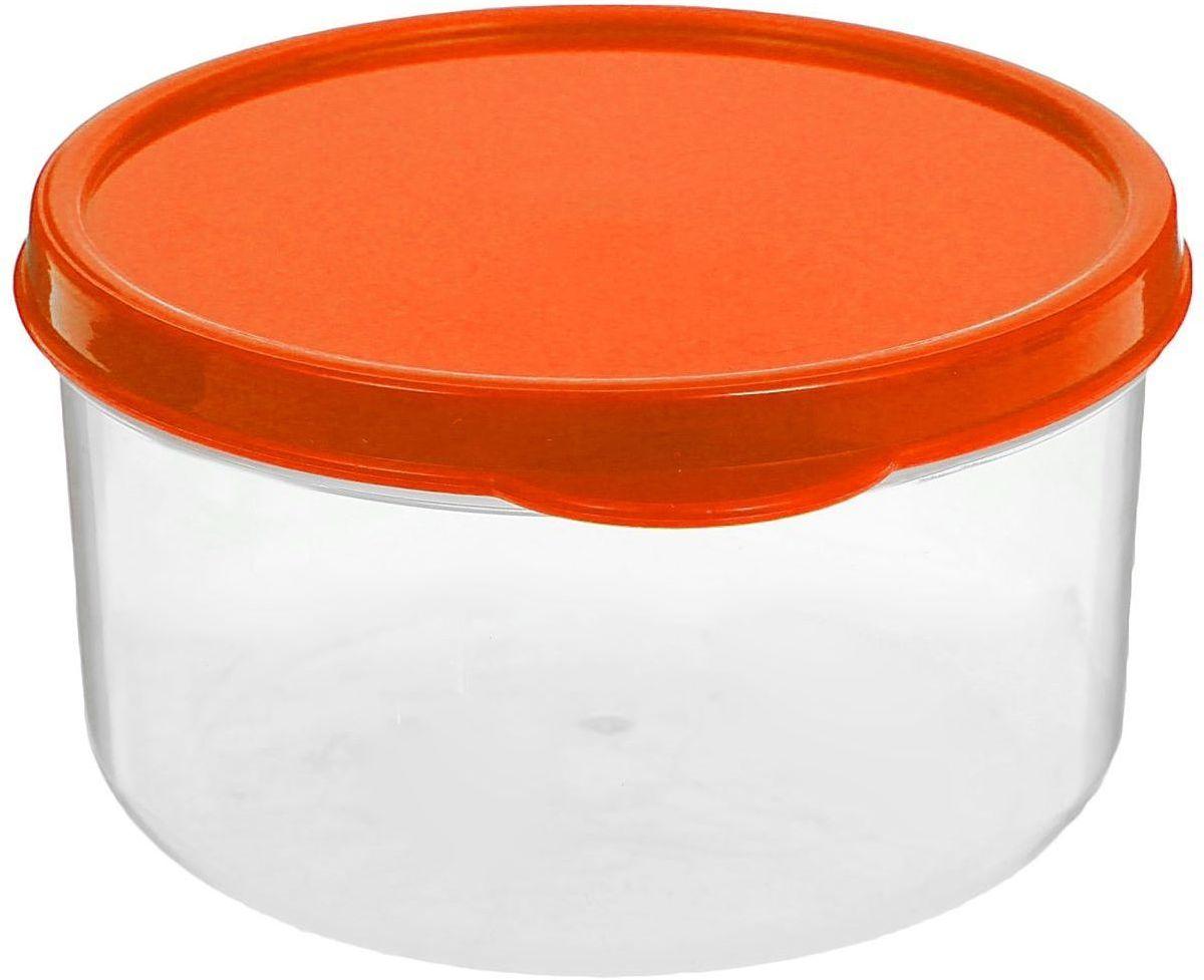 Контейнер пищевой Доляна, цвет: оранжевый, 300 мл1333806Если после вкусного обеда осталась еда, а насладиться трапезой хочется и на следующий день, контейнер станет отличным решением даннойпроблемы!В качестве материала для изготовления используется пластик, что делает процесс ухода за контейнером ещё более эффективным. К контейнерув комплекте также прилагается крышка подходящего размера, это позволяет плотно и надёжно удерживать запах еды и упрощает процесстранспортировки. Эргономичный дизайн и многофункциональность контейнера Доляна - вот, что является причиной большой популярности данного предмета укаждой хозяйки.