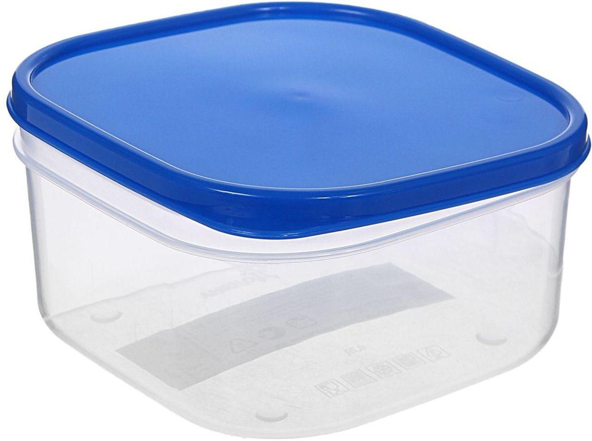 Контейнер пищевой Доляна, цвет: синий, 700 мл1333845Если после вкусного обеда осталась еда, а насладиться трапезой хочется и на следующий день, ланч-бокс станет отличным решением данной проблемы!Такой контейнер является незаменимым предметом кухонной утвари, ведь у него много преимуществ:Простота ухода. Ланч-бокс достаточно промыть тёплой водой с небольшим количеством чистящего средства, и он снова готов к использованию.Вместительность. Большой выбор форм и объёма поможет разместить разнообразные продукты от сахара до супов.Эргономичность. Ланч-боксы очень легко хранить даже в самой маленькой кухне, так как их можно поставить один в другой по принципу матрёшки.Многофункциональность. Разнообразие цветов и форм делает возможным использование контейнеров не только на кухне, но и в других областях домашнего быта.Любители приготовления обеда на всю семью в большинстве случаев приобретают ланч-боксы наборами, так как это позволяет рассортировать продукты по всевозможным признакам. К тому же контейнеры среднего размера станут незаменимыми помощниками на работе: ведь что может быть приятнее, чем порадовать себя во время обеда прекрасной едой, заботливо сохранённой в контейнере?В качестве материала для изготовления используется пластик, что делает процесс ухода за контейнером ещё более эффективным. К каждому ланч-боксу в комплекте также прилагается крышка подходящего размера, это позволяет плотно и надёжно удерживать запах еды и упрощает процесс транспортировки.Однако рекомендуется соблюдать и меры предосторожности: не использовать пластиковые контейнеры в духовых шкафах и на открытом огне, а также не разогревать в микроволновых печах при закрытой крышке ланч-бокса. Соблюдение мер безопасности позволит продлить срок эксплуатации и сохранить отличный внешний вид изделия.Эргономичный дизайн и многофункциональность таких контейнеров — вот, что является причиной большой популярности данного предмета у каждой хозяйки. А в преддверии лета и дачного сезона такое приобретение позвол