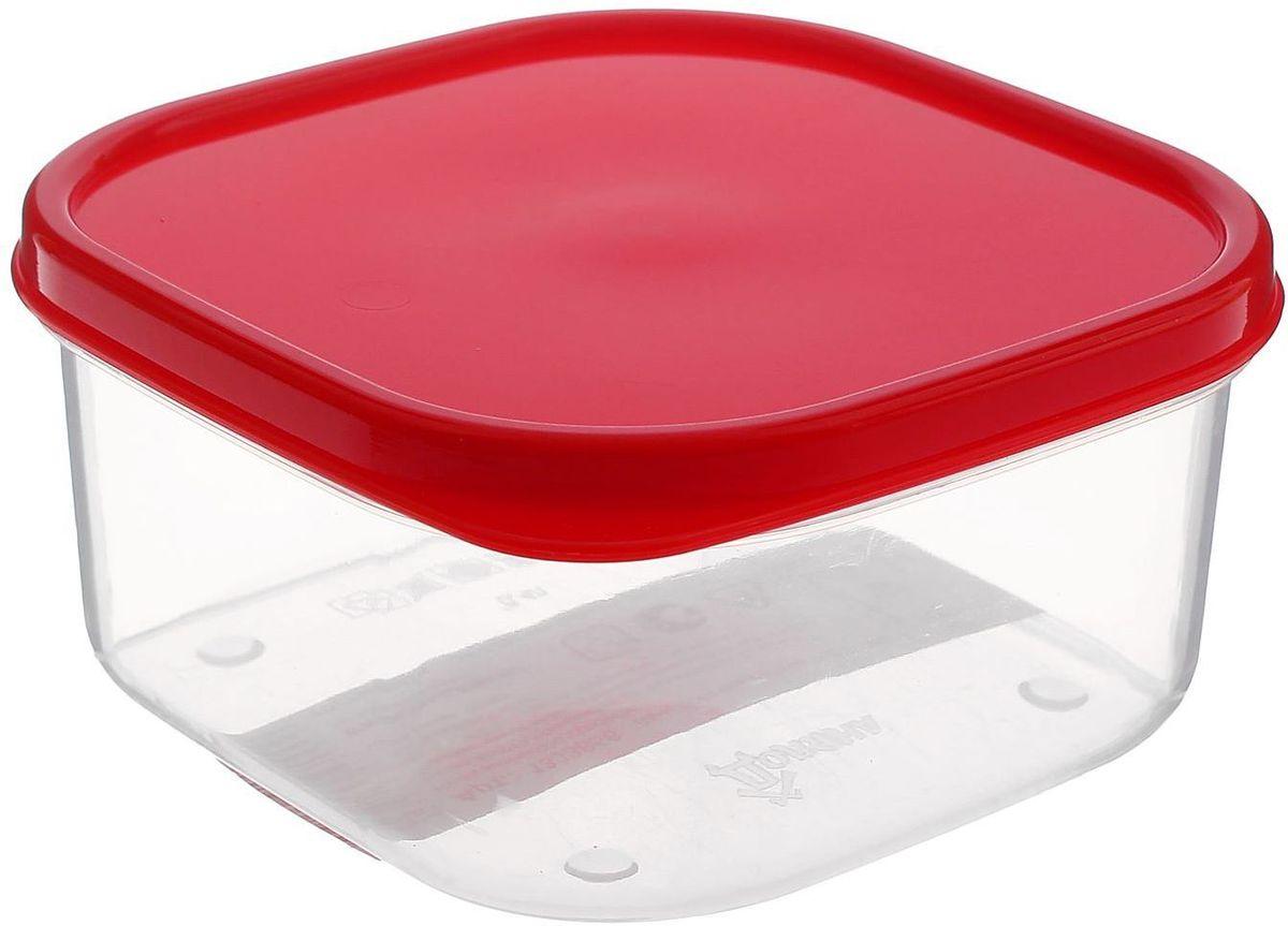 Контейнер пищевой Доляна, цвет: красный, 400 мл1333856Если после вкусного обеда осталась еда, а насладиться трапезой хочется и на следующий день,контейнер станет отличным решением данной проблемы!В качестве материала для изготовления используется пластик, что делает процесс ухода законтейнером ещё более эффективным. К контейнеру в комплекте также прилагается крышкаподходящего размера, это позволяет плотно и надёжно удерживать запах еды и упрощаетпроцесс транспортировки. Эргономичный дизайн и многофункциональность контейнера Доляна — вот, что являетсяпричиной большой популярности данного предмета у каждой хозяйки.