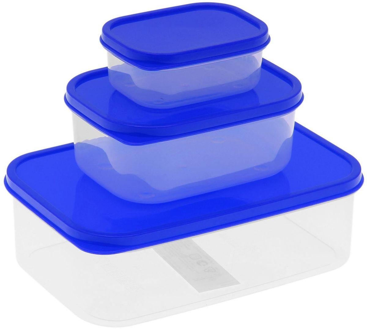Набор пищевых контейнеров Доляна, цвет: синий, 3 шт1333883Если после вкусного обеда осталась еда, а насладиться трапезой хочется и на следующий день, ланч-бокс станет отличным решением данной проблемы! Такой контейнер является незаменимым предметом кухонной утвари, ведь у него много преимуществ: Простота ухода. Ланч-бокс достаточно промыть тёплой водой с небольшим количеством чистящего средства, и он снова готов к использованию. Вместительность. Большой выбор форм и объёма поможет разместить разнообразные продукты от сахара до супов. Эргономичность. Ланч-боксы очень легко хранить даже в самой маленькой кухне, так как их можно поставить один в другой по принципу матрёшки. Многофункциональность. Разнообразие цветов и форм делает возможным использование контейнеров не только на кухне, но и в других областях домашнего быта. Любители приготовления обеда на всю семью в большинстве случаев приобретают ланч-боксы наборами, так как это позволяет рассортировать продукты по всевозможным признакам. К тому же контейнеры среднего размера станут незаменимыми помощниками на работе: ведь что может быть приятнее, чем порадовать себя во время обеда прекрасной едой, заботливо сохранённой в контейнере? В качестве материала для изготовления используется пластик, что делает процесс ухода за контейнером ещё более эффективным. К каждому ланч-боксу в комплекте также прилагается крышка подходящего размера, это позволяет плотно и надёжно удерживать запах еды и упрощает процесс транспортировки. Однако рекомендуется соблюдать и меры предосторожности: не использовать пластиковые контейнеры в духовых шкафах и на открытом огне, а также не разогревать в микроволновых печах при закрытой крышке ланч-бокса. Соблюдение мер безопасности позволит продлить срок эксплуатации и сохранить отличный внешний вид изделия. Эргономичный дизайн и многофункциональность таких контейнеров — вот, что является причиной большой популярности данного предмета у каждой хозяйки. А в преддверии лета и дачного сезона такое прио