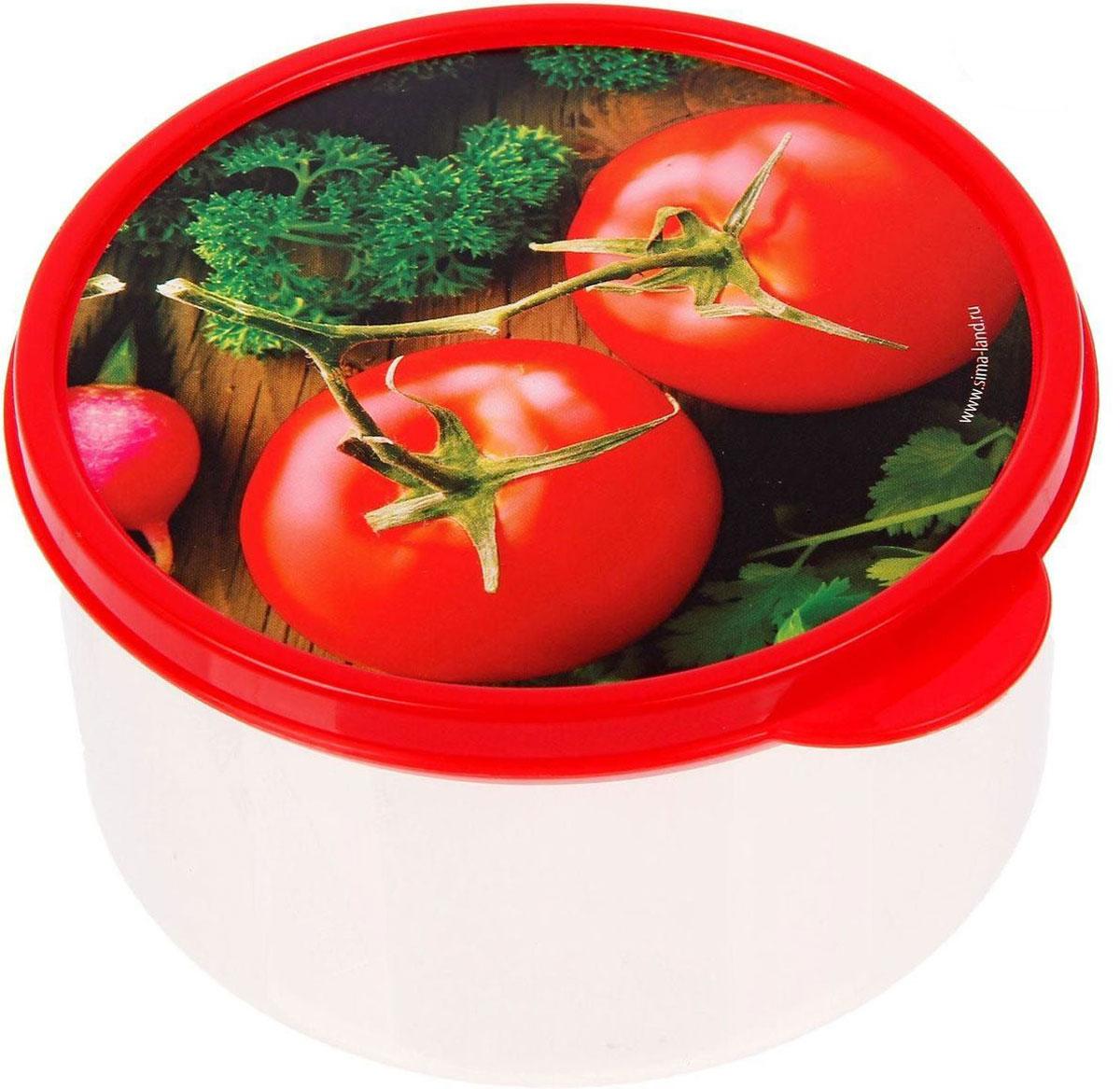 Ланч-бокс Доляна №4, круглый, 500 мл1333893Ланч-бокс Доляна №4 круглой формы выполнен из прочного пластика. Изделие оснащено герметичной крышкой, оформленной ярким рисунком, которая позволяет плотно и надежно удерживать запах еды и упрощает процесс транспортировки. Такой ланч-бокс станет незаменимым предметом кухонной утвари.