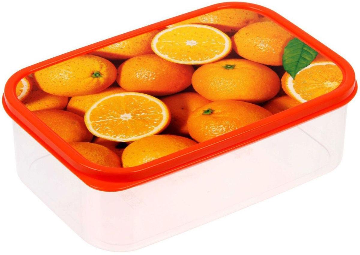 Ланч-бокс Доляна Апельсины, прямоугольный, 1,2 л1333936Ланч-бокс Доляна изготовлен из прочного пищевого пластика. В комплекте прилагается крышка подходящего размера, которая плотно и надежно закрывается и упрощает процесс транспортировки.Такой контейнер является незаменимым предметом кухонной утвари, ведь у него много преимуществ:Простота ухода. Ланч-бокс достаточно промыть теплой водой с небольшим количеством чистящего средства.Вместительность. Изделие позволяет разместить разнообразные продукты от сахара до супов.Эргономичность. Ланч-боксы очень легко хранить даже в самой маленькой кухне, так как их можно поставить один в другой по принципу матрешки.Многофункциональность. Он пригодится, если после вкусного обеда осталась еда, а насладиться трапезой хочется и на следующий день. Можно использовать не только на кухне, но и для хранения различных бытовых предметов, а также брать с собой еду на работу или учебу.Не использовать пластиковые контейнеры в духовых шкафах и на открытом огне, а также не разогревать в микроволновых печах при закрытой крышке ланч-бокса.