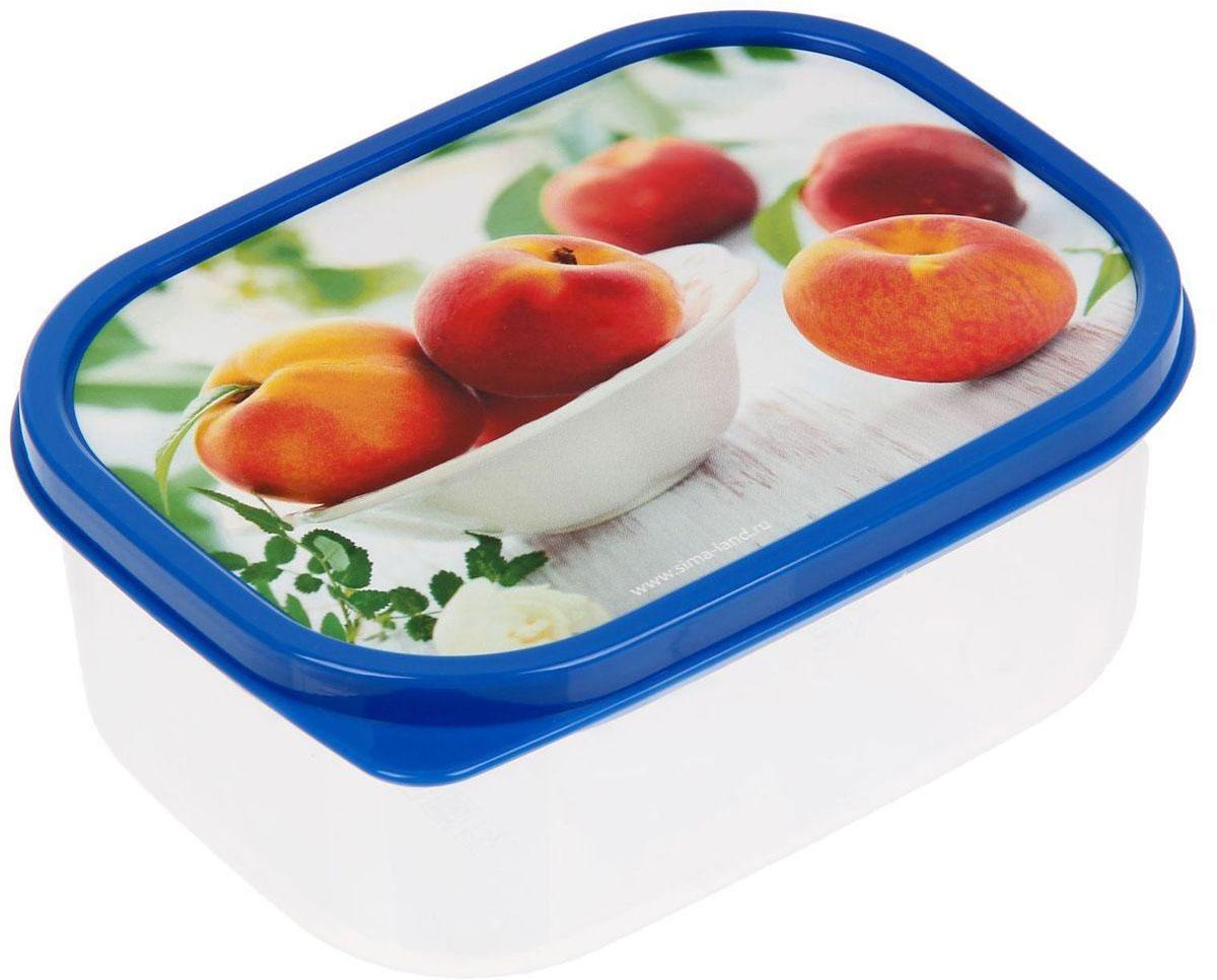 Ланч-бокс Доляна Персики, прямоугольный, 500 мл1333950Ланч-бокс Доляна изготовлен из прочного пищевого пластика. В комплекте прилагается крышка подходящего размера, которая плотно и надежно закрывается и упрощает процесс транспортировки. Такой контейнер является незаменимым предметом кухонной утвари, ведь у него много преимуществ: Простота ухода. Ланч-бокс достаточно промыть теплой водой с небольшим количеством чистящего средства. Вместительность. Изделие позволяет разместить разнообразные продукты от сахара до супов. Эргономичность. Ланч-боксы очень легко хранить даже в самой маленькой кухне, так как их можно поставить один в другой по принципу матрешки. Многофункциональность. Он пригодится, если после вкусного обеда осталась еда, а насладиться трапезой хочется и на следующий день. Можно использовать не только на кухне, но и для хранения различных бытовых предметов, а также брать с собой еду на работу или учебу. Не использовать пластиковые контейнеры в духовых шкафах и на открытом огне, а также не разогревать в микроволновых печах при закрытой крышке ланч-бокса.