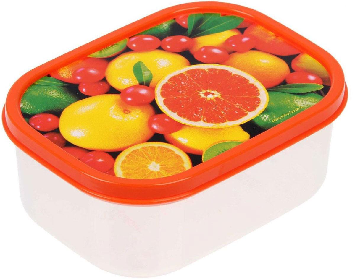 Ланч-бокс Доляна Грейпфрут, прямоугольный, 500 мл1333954Ланч-бокс Доляна изготовлен из прочного пищевого пластика. В комплекте прилагается крышка подходящего размера, которая плотно и надежно закрывается и упрощает процесс транспортировки. Такой контейнер является незаменимым предметом кухонной утвари, ведь у него много преимуществ: Простота ухода. Ланч-бокс достаточно промыть теплой водой с небольшим количеством чистящего средства. Вместительность. Изделие позволяет разместить разнообразные продукты от сахара до супов. Эргономичность. Ланч-боксы очень легко хранить даже в самой маленькой кухне, так как их можно поставить один в другой по принципу матрешки. Многофункциональность. Он пригодится, если после вкусного обеда осталась еда, а насладиться трапезой хочется и на следующий день. Можно использовать не только на кухне, но и для хранения различных бытовых предметов, а также брать с собой еду на работу или учебу. Не использовать пластиковые контейнеры в духовых шкафах и на открытом огне, а также не разогревать в микроволновых печах при закрытой крышке ланч-бокса.