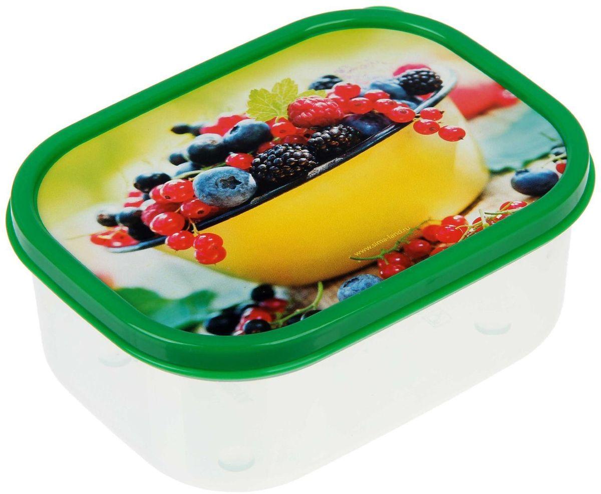Ланч-бокс Доляна Садовые ягоды, прямоугольный, 500 мл1333958Ланч-бокс Доляна изготовлен из прочного пищевого пластика. В комплекте прилагается крышка подходящего размера, которая плотно и надежно закрывается и упрощает процесс транспортировки.Такой контейнер является незаменимым предметом кухонной утвари, ведь у него много преимуществ:Простота ухода. Ланч-бокс достаточно промыть теплой водой с небольшим количеством чистящего средства.Вместительность. Изделие позволяет разместить разнообразные продукты от сахара до супов.Эргономичность. Ланч-боксы очень легко хранить даже в самой маленькой кухне, так как их можно поставить один в другой по принципу матрешки.Многофункциональность. Он пригодится, если после вкусного обеда осталась еда, а насладиться трапезой хочется и на следующий день. Можно использовать не только на кухне, но и для хранения различных бытовых предметов, а также брать с собой еду на работу или учебу.Не использовать пластиковые контейнеры в духовых шкафах и на открытом огне, а также не разогревать в микроволновых печах при закрытой крышке ланч-бокса.