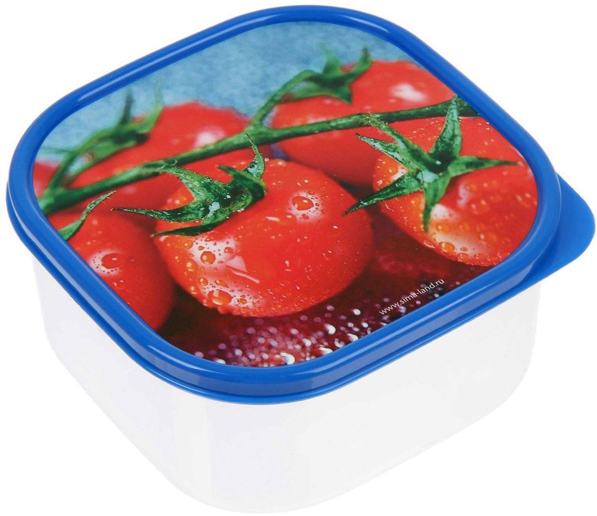 Ланч-бокс Доляна №3, квадратный, 700 мл1333976Ланч-бокс Доляна изготовлен из прочного пищевого пластика. В комплекте прилагается крышка подходящего размера, которая плотно и надежно закрывается, и упрощает процесс транспортировки. Такой контейнер является незаменимым предметом кухонной утвари, ведь у него много преимуществ: Простота ухода. Ланч-бокс достаточно промыть теплой водой с небольшим количеством чистящего средства. Вместительность. Изделие позволяет разместить разнообразные продукты от сахара до супов. Эргономичность. Ланч-боксы очень легко хранить даже в самой маленькой кухне, так как их можно поставить один в другой по принципу матрешки. Многофункциональность. Он пригодится, если после вкусного обеда осталась еда, а насладиться трапезой хочется и на следующий день. Можно использовать не только на кухне, но и для хранения различных бытовых предметов, а также брать с собой еду на работу или учебу. Не использовать пластиковые контейнеры в духовых шкафах и на открытом огне, а также не разогревать в микроволновых печах при закрытой крышке ланч-бокса.