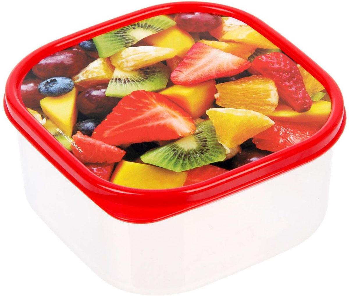 Ланч-бокс Доляна №4, квадратный, 700 мл1333977Если после вкусного обеда осталась еда, а насладиться трапезой хочется и на следующий день, ланч-бокс станет отличным решением данной проблемы!Такой контейнер является незаменимым предметом кухонной утвари, ведь у него много преимуществ:Простота ухода. Ланч-бокс достаточно промыть тёплой водой с небольшим количеством чистящего средства, и он снова готов к использованию.Вместительность. Большой выбор форм и объёма поможет разместить разнообразные продукты от сахара до супов.Эргономичность. Ланч-боксы очень легко хранить даже в самой маленькой кухне, так как их можно поставить один в другой по принципу матрёшки.Многофункциональность. Разнообразие цветов и форм делает возможным использование контейнеров не только на кухне, но и в других областях домашнего быта.Любители приготовления обеда на всю семью в большинстве случаев приобретают ланч-боксы наборами, так как это позволяет рассортировать продукты по всевозможным признакам. К тому же контейнеры среднего размера станут незаменимыми помощниками на работе: ведь что может быть приятнее, чем порадовать себя во время обеда прекрасной едой, заботливо сохранённой в контейнере?В качестве материала для изготовления используется пластик, что делает процесс ухода за контейнером ещё более эффективным. К каждому ланч-боксу в комплекте также прилагается крышка подходящего размера, это позволяет плотно и надёжно удерживать запах еды и упрощает процесс транспортировки.Однако рекомендуется соблюдать и меры предосторожности: не использовать пластиковые контейнеры в духовых шкафах и на открытом огне, а также не разогревать в микроволновых печах при закрытой крышке ланч-бокса. Соблюдение мер безопасности позволит продлить срок эксплуатации и сохранить отличный внешний вид изделия.Эргономичный дизайн и многофункциональность таких контейнеров — вот, что является причиной большой популярности данного предмета у каждой хозяйки. А в преддверии лета и дачного сезона такое приобретение позволит под