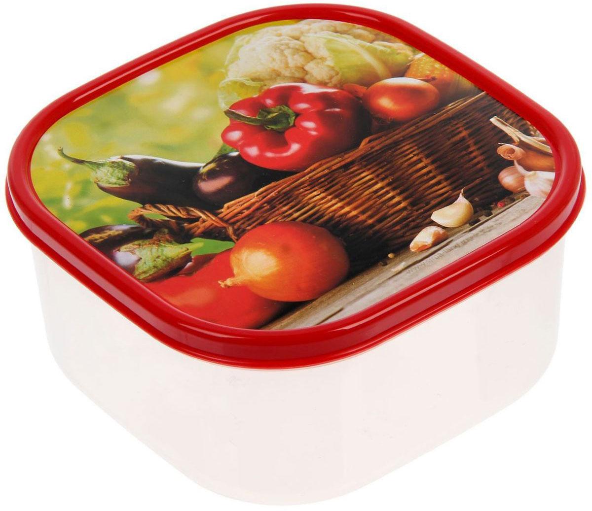 Ланч-бокс Доляна №5, квадратный, 700 мл1333978Если после вкусного обеда осталась еда, а насладиться трапезой хочется и на следующий день, ланч-бокс станет отличным решением данной проблемы!Такой контейнер является незаменимым предметом кухонной утвари, ведь у него много преимуществ:Простота ухода. Ланч-бокс достаточно промыть тёплой водой с небольшим количеством чистящего средства, и он снова готов к использованию.Вместительность. Большой выбор форм и объёма поможет разместить разнообразные продукты от сахара до супов.Эргономичность. Ланч-боксы очень легко хранить даже в самой маленькой кухне, так как их можно поставить один в другой по принципу матрёшки.Многофункциональность. Разнообразие цветов и форм делает возможным использование контейнеров не только на кухне, но и в других областях домашнего быта.Любители приготовления обеда на всю семью в большинстве случаев приобретают ланч-боксы наборами, так как это позволяет рассортировать продукты по всевозможным признакам. К тому же контейнеры среднего размера станут незаменимыми помощниками на работе: ведь что может быть приятнее, чем порадовать себя во время обеда прекрасной едой, заботливо сохранённой в контейнере?В качестве материала для изготовления используется пластик, что делает процесс ухода за контейнером ещё более эффективным. К каждому ланч-боксу в комплекте также прилагается крышка подходящего размера, это позволяет плотно и надёжно удерживать запах еды и упрощает процесс транспортировки.Однако рекомендуется соблюдать и меры предосторожности: не использовать пластиковые контейнеры в духовых шкафах и на открытом огне, а также не разогревать в микроволновых печах при закрытой крышке ланч-бокса. Соблюдение мер безопасности позволит продлить срок эксплуатации и сохранить отличный внешний вид изделия.Эргономичный дизайн и многофункциональность таких контейнеров — вот, что является причиной большой популярности данного предмета у каждой хозяйки. А в преддверии лета и дачного сезона такое приобретение позволит под