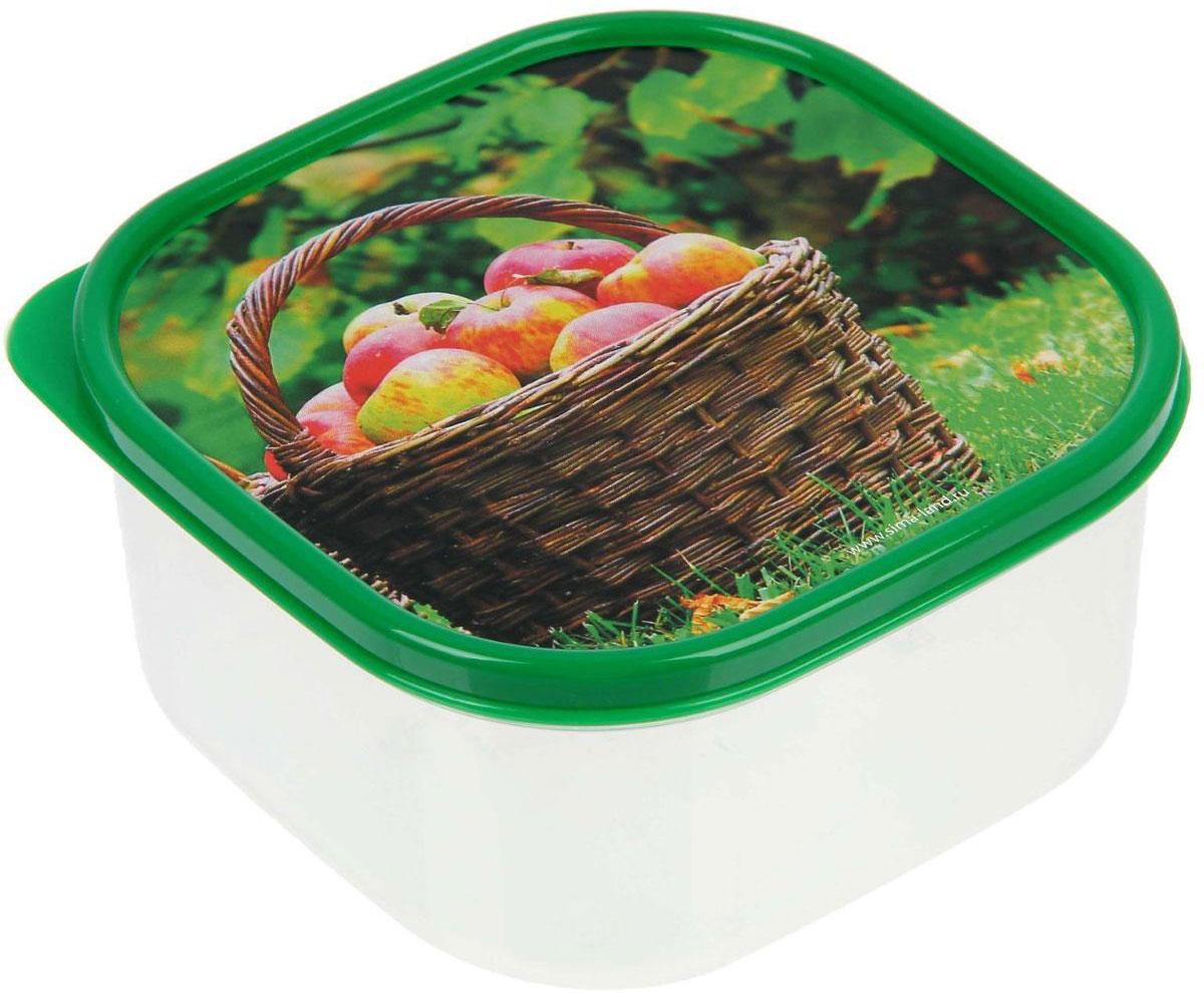 Ланч-бокс Доляна №10, квадратный, 700 мл1333983Ланч-бокс Доляна изготовлен из прочного пищевого пластика. В комплекте прилагается крышкаподходящего размера, которая плотно и надежно закрывается и упрощает процесстранспортировки.Такой контейнер является незаменимым предметом кухонной утвари, ведь у него многопреимуществ:Простота ухода. Ланч-бокс достаточно промыть теплой водой с небольшим количествомчистящего средства.Вместительность. Изделие позволяет разместить разнообразные продукты от сахара до супов. Эргономичность. Ланч-боксы очень легко хранить даже в самой маленькой кухне, так как их можнопоставить один в другой по принципу матрешки.Многофункциональность. Он пригодится, если после вкусного обеда осталась еда, а насладитьсятрапезой хочется и на следующий день. Можно использовать не только на кухне, но и дляхранения различных бытовых предметов, а также брать с собой еду на работу или учебу.Не использовать пластиковые контейнеры в духовых шкафах и на открытом огне, а также неразогревать в микроволновых печах при закрытой крышке ланч-бокса.