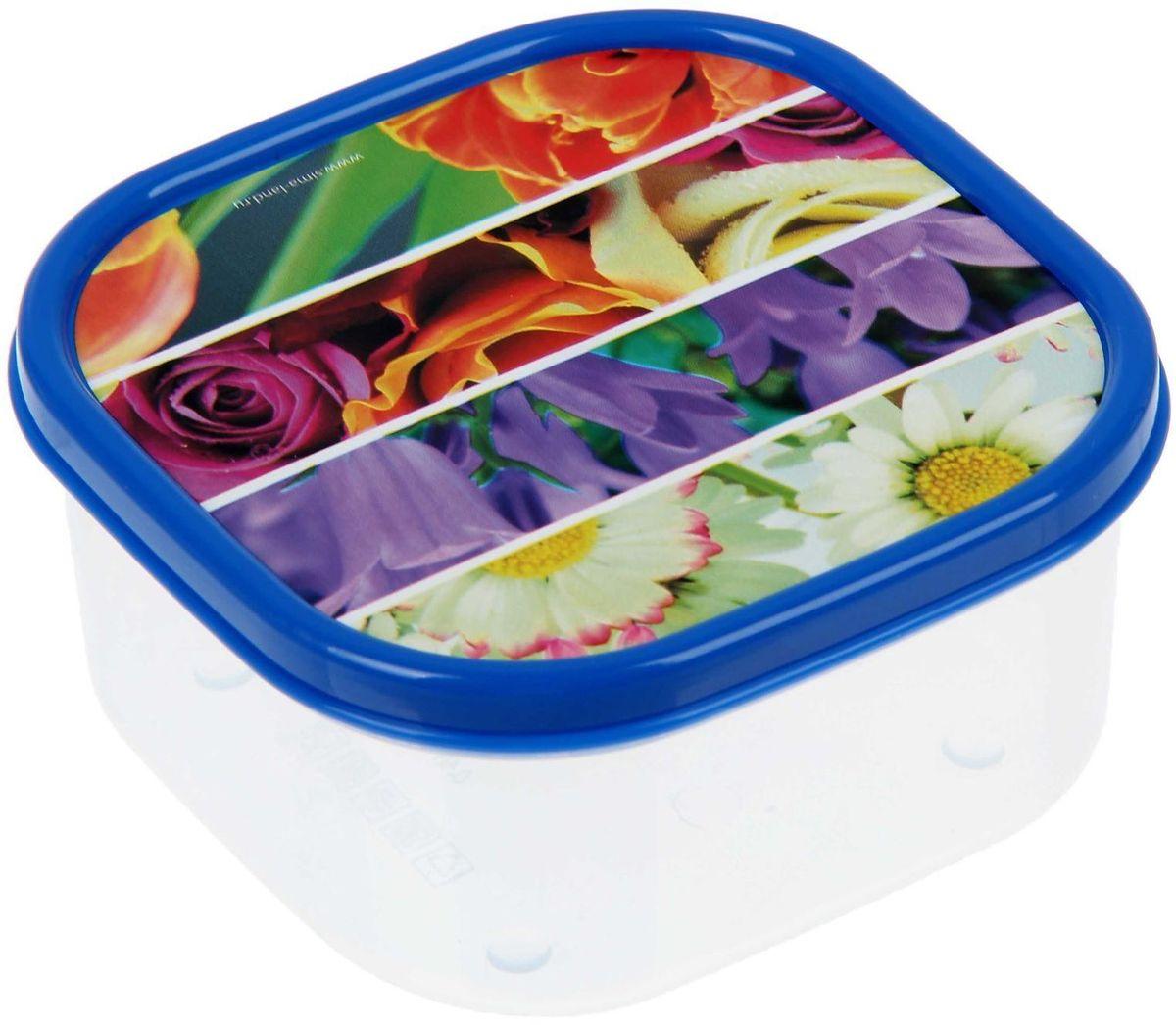 Ланч-бокс Доляна №2, квадратный, 400 мл1333992Если после вкусного обеда осталась еда, а насладиться трапезой хочется и на следующий день, ланч-бокс станет отличным решением данной проблемы!Такой контейнер является незаменимым предметом кухонной утвари, ведь у него много преимуществ:Простота ухода. Ланч-бокс достаточно промыть тёплой водой с небольшим количеством чистящего средства, и он снова готов к использованию.Вместительность. Большой выбор форм и объёма поможет разместить разнообразные продукты от сахара до супов.Эргономичность. Ланч-боксы очень легко хранить даже в самой маленькой кухне, так как их можно поставить один в другой по принципу матрёшки.Многофункциональность. Разнообразие цветов и форм делает возможным использование контейнеров не только на кухне, но и в других областях домашнего быта.Любители приготовления обеда на всю семью в большинстве случаев приобретают ланч-боксы наборами, так как это позволяет рассортировать продукты по всевозможным признакам. К тому же контейнеры среднего размера станут незаменимыми помощниками на работе: ведь что может быть приятнее, чем порадовать себя во время обеда прекрасной едой, заботливо сохранённой в контейнере?В качестве материала для изготовления используется пластик, что делает процесс ухода за контейнером ещё более эффективным. К каждому ланч-боксу в комплекте также прилагается крышка подходящего размера, это позволяет плотно и надёжно удерживать запах еды и упрощает процесс транспортировки.Однако рекомендуется соблюдать и меры предосторожности: не использовать пластиковые контейнеры в духовых шкафах и на открытом огне, а также не разогревать в микроволновых печах при закрытой крышке ланч-бокса. Соблюдение мер безопасности позволит продлить срок эксплуатации и сохранить отличный внешний вид изделия.Эргономичный дизайн и многофункциональность таких контейнеров — вот, что является причиной большой популярности данного предмета у каждой хозяйки. А в преддверии лета и дачного сезона такое приобретение позволит под
