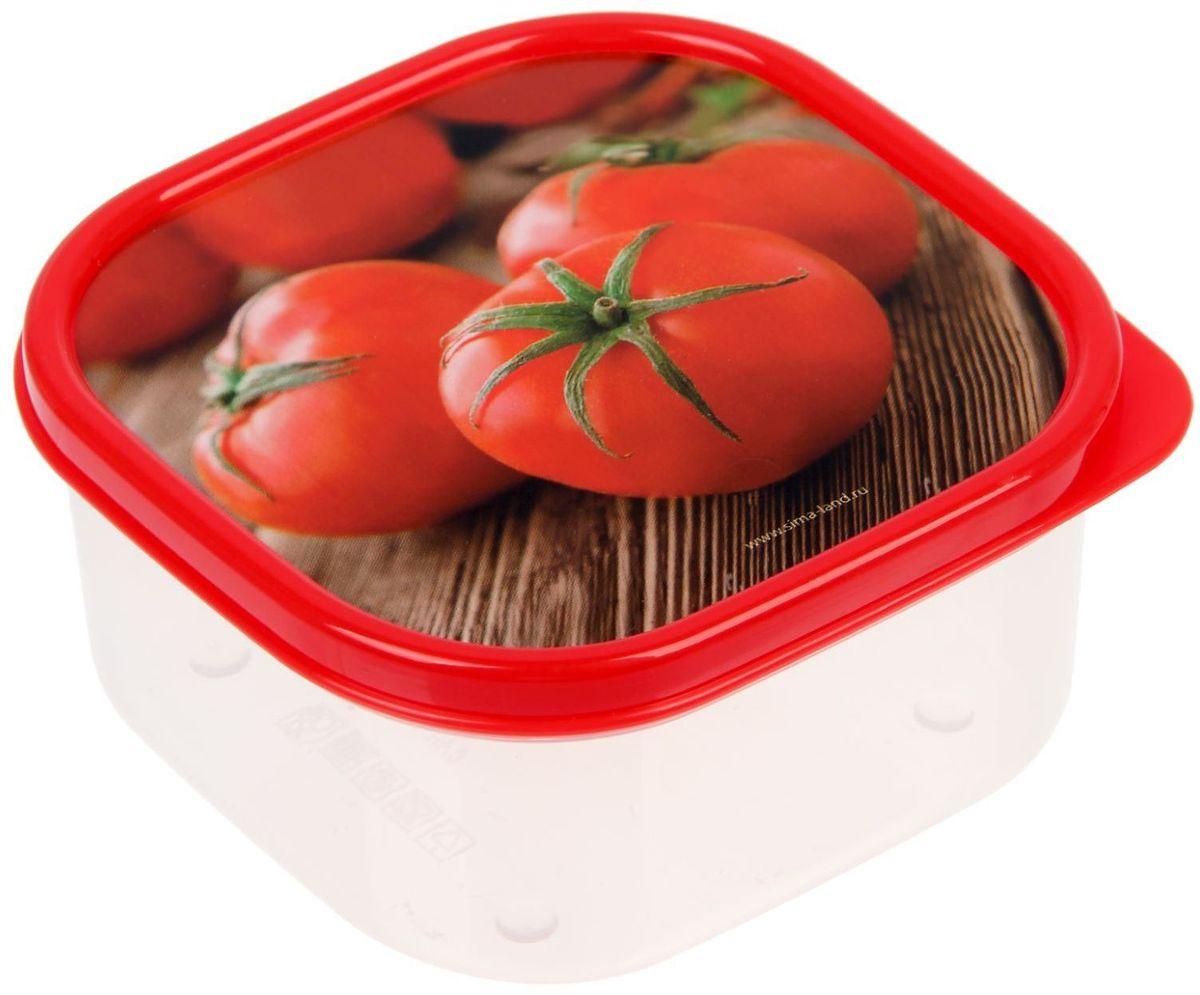 Ланч-бокс Доляна Томаты, квадратный, 400 мл1333994Ланч-бокс Доляна изготовлен из прочного пищевого пластика. В комплекте прилагается крышка подходящего размера, которая плотно и надежно закрывается и упрощает процесс транспортировки. Такой контейнер является незаменимым предметом кухонной утвари, ведь у него много преимуществ: Простота ухода. Ланч-бокс достаточно промыть теплой водой с небольшим количеством чистящего средства. Вместительность. Изделие позволяет разместить разнообразные продукты от сахара до супов. Эргономичность. Ланч-боксы очень легко хранить даже в самой маленькой кухне, так как их можно поставить один в другой по принципу матрешки. Многофункциональность. Он пригодится, если после вкусного обеда осталась еда, а насладиться трапезой хочется и на следующий день. Можно использовать не только на кухне, но и для хранения различных бытовых предметов, а также брать с собой еду на работу или учебу. Не использовать пластиковые контейнеры в духовых шкафах и на открытом огне, а также не разогревать в микроволновых печах при закрытой крышке ланч-бокса.