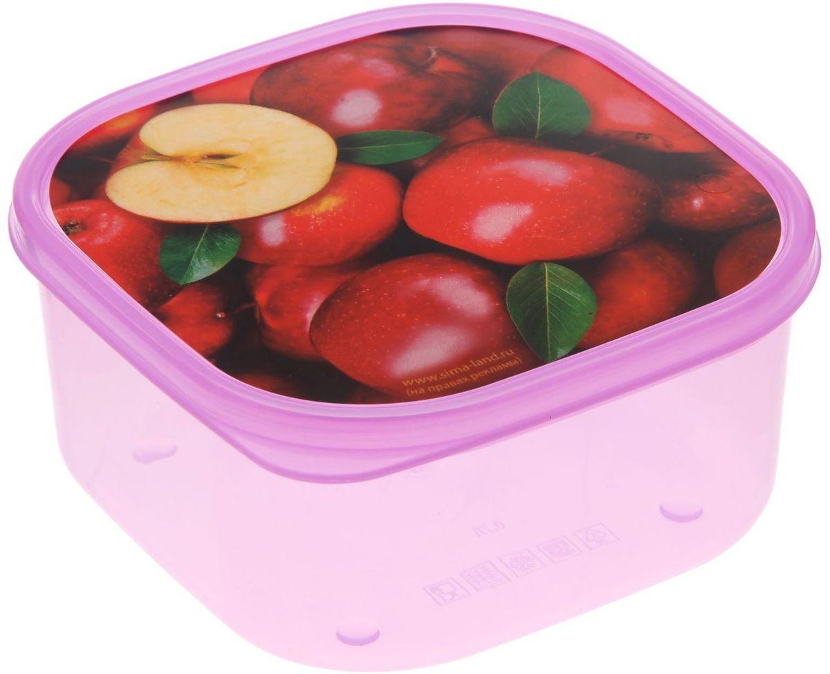 Ланч-бокс Доляна №24, квадратный, 700 мл1699855Ланч-бокс Доляна изготовлен из прочного пищевого пластика. В комплекте прилагается крышка подходящего размера, которая плотно и надежно закрывается, и упрощает процесс транспортировки. Такой контейнер является незаменимым предметом кухонной утвари, ведь у него много преимуществ: Простота ухода. Ланч-бокс достаточно промыть теплой водой с небольшим количеством чистящего средства. Вместительность. Изделие позволяет разместить разнообразные продукты от сахара до супов. Эргономичность. Ланч-боксы очень легко хранить даже в самой маленькой кухне, так как их можно поставить один в другой по принципу матрешки. Многофункциональность. Он пригодится, если после вкусного обеда осталась еда, а насладиться трапезой хочется и на следующий день. Можно использовать не только на кухне, но и для хранения различных бытовых предметов, а также брать с собой еду на работу или учебу. Не использовать пластиковые контейнеры в духовых шкафах и на открытом огне, а также не разогревать в микроволновых печах при закрытой крышке ланч-бокса.