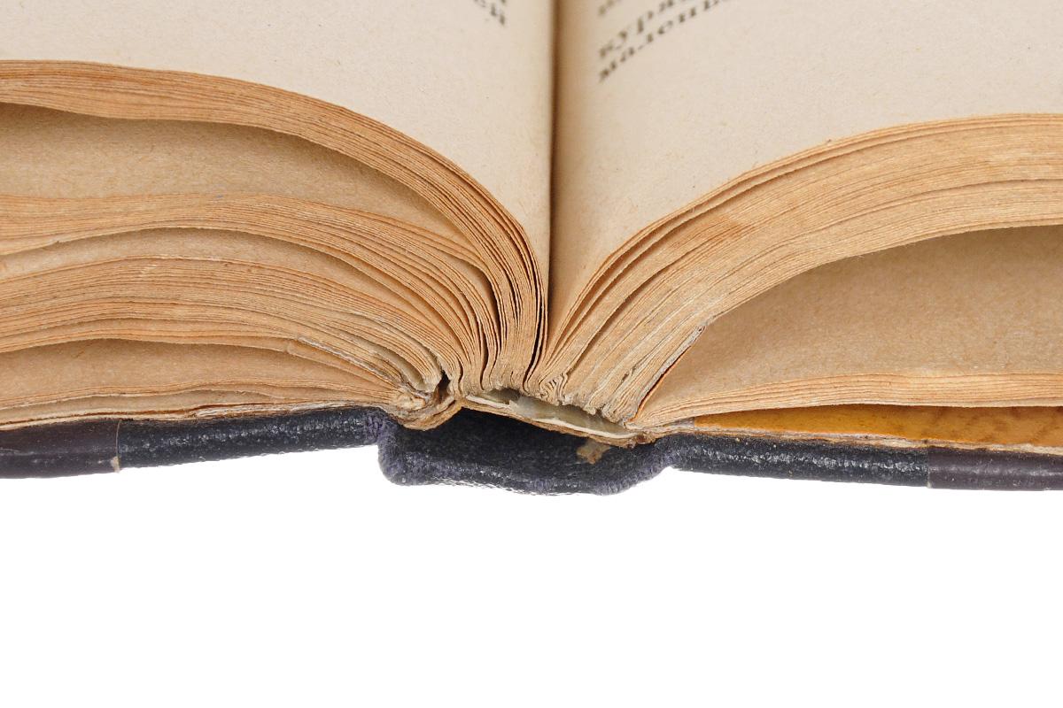 Эхо. Иллюстрированный альманах иностранной литературы, №1, 1924.