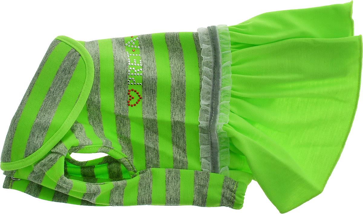 Платье для собак Pret-a-Pet Фэшн Ультра, для девочки, цвет: зеленый, серый. Размер SMOS-004-GREEN-SПлатье для собак Pret-a-Pet Фэшн Ультра, изготовленное из вискозы, отлично подойдет для прогулок в сухую погоду или для дома.Изделие оснащено внутренней резинкой. Спинка украшена текстильной ленточкой и стразами. Застегивается платье на животе на металлические кнопки.Благодаря такому платью вашему питомцу будет комфортно наслаждаться прогулкой или играми дома.Длина по спинке: 23-25 см.Объем груди: 31-33 см.Обхват шеи: 24 см.