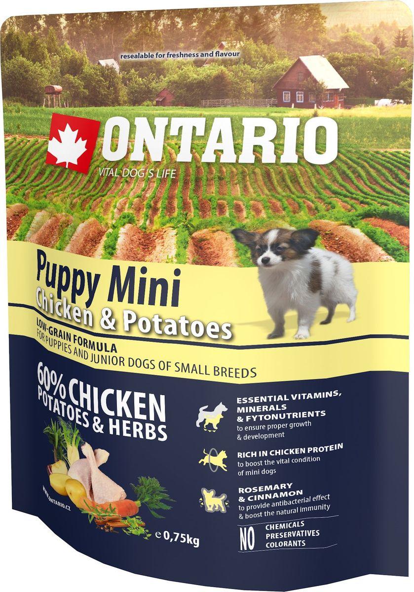 Корм сухой Ontario Puppy Mini для щенков мелких пород, с курицей и картофелем, 750 г46620Полноценный сухой корм супер-премиум класса Ontario Puppy Mini имеет формулу с низким содержанием зерновых. Предназначен для щенков и молодых собак малых пород (1-12 месяцев). Сбалансированный состав для здорового функционирования и развития всего организма. Корм содержит широкий набор витаминов и минералов, способствующих здоровому росту и развитию щенков. Высокое содержание белка из мяса курицы имеет важное значение для правильного формирования мышечной ткани.Пивные дрожжи содержат витамины группы В и ферменты, способствуют росту полезных бактерий в кишечнике, улучшают состояние кожи и шерсти животных.Лососевый жир богат незаменимыми жирными кислотами Омега-3, оказывающими благотворное влияние на все органы и системы организма, особенно на шерсть животных. Омега-3 и Омега-6 жирные кислоты являются важными компонентами для поддержки функций сердца. Яблоки богаты клетчаткой (пектином), способствующей пищеварению и выводящей токсины из кишечника, а также являются источником витаминов и антиоксидантов. Специальная смесь трав и специй, особенно аниса, гвоздики и морских водорослей, способствует поддержанию гигиены полости рта и здоровья зубов.Маннанолигосахариды естественным образом поддерживают работу кишечника и улучшают общее состояние здоровья животных.Фруктоолигосахариды стимулируют рост нормальной микрофлоры кишечника (лакто- и бифидобактерий), подавляют развитие патогенных бактерий, предупреждают возникновение дисбактериоза, улучшают переваривание и поглощение питательных веществ.Состав: дегидрированная курица (38%), картофельные хлопья (17%), рис, сушеные яблоки, куриный жир, картофельный белок, пивные дрожжи, гидролизованный куриный белок (5%), рыбий жир, сушеная морковь, маннанолигосахариды (210 мг/кг), фруктоолигосахариды (140 мг/кг), смесь морских водорослей, фенхель, тимьян, корица, анис, гвоздика, розмарин и юкка (140 мг/кг).Гарантированный анализ: белок 30%, жир 20%,