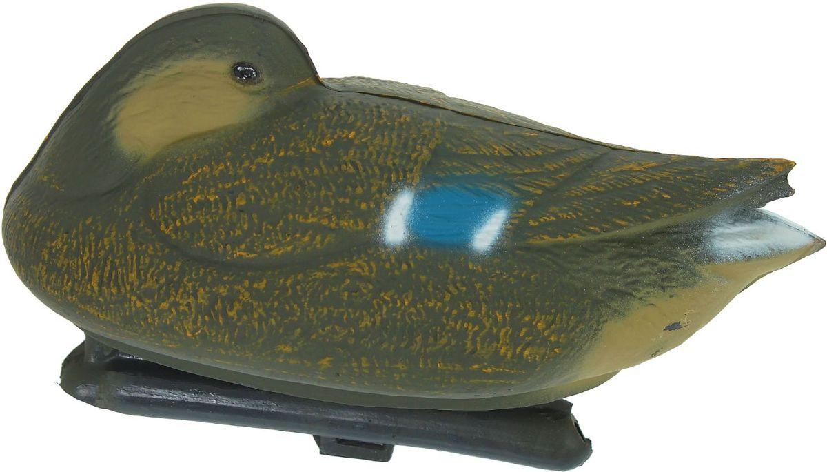 Фигура подсадная Отдыхающая кряква. Утка1216305Подсадная фигура Отдыхающая кряква. Утка выполнена из пластика, прошедшего специальную обработку, и покрыта антибликовыми красками. Материал отлично держится на воде и не крошится. Изделие имеет натуральную матовую окраску. Подсадное чучело часто используется для успешной охоты на уток, в основном на водоеме, в местах с хорошим обзором вокруг. Просто поместите его в место естественного обитания птицы, например, на воду или же в траву и примените манок. Не забудьте позаботиться о маскировке. Реалистичная подсадная фигура плюс духовой манок - и удачная охота обеспечена. Такая фигура также может использоваться для ландшафтного декора на дачном участке.