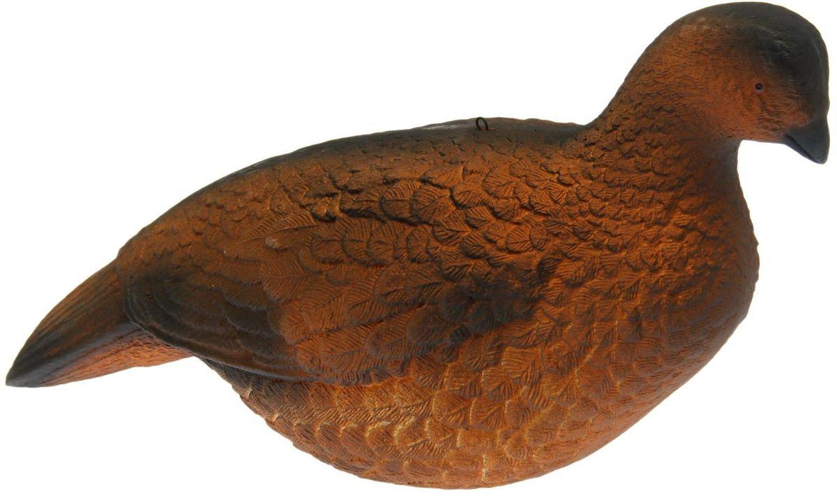 Фигура подсадная Тетерка. 14579131457913Подсадная фигура Тетерка выполнена из пластика, прошедшего специальную обработку, и покрыта антибликовыми красками. Изделие имеет натуральную матовую окраску. Подсадное чучело часто используется для успешной охоты на птицу, в местах с хорошим обзором вокруг. Просто поместите его в место естественного обитания птицы. Не забудьте позаботиться о маскировке. Реалистичная подсадная фигура плюс духовой манок - и удачная охота обеспечена. Такая фигура также может использоваться для ландшафтного декора на дачном участке.