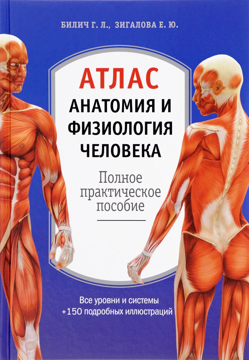 Г. Л. Билич, Е. Ю. Зигалова Анатомия и физиология человека. Атлас ISBN: 978-5-699-95865-8 анатомия человека русско латинский атлас