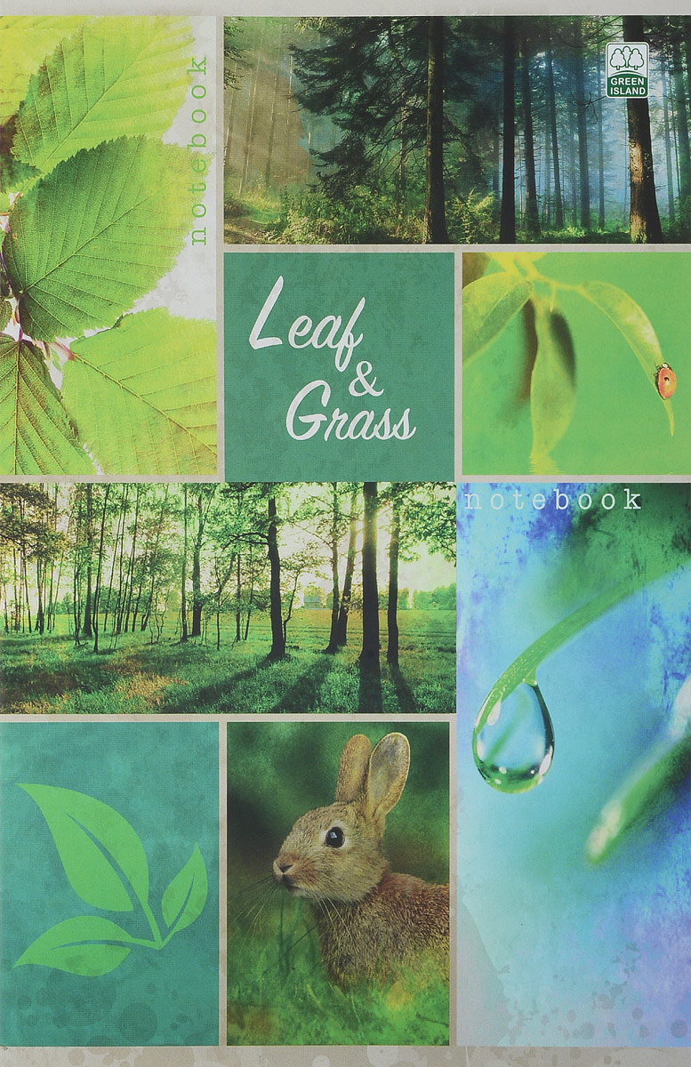 Green Island Тетрадь Природа Коллаж Leaf & Grass 80 листов в клетку river island ri004ewuap29