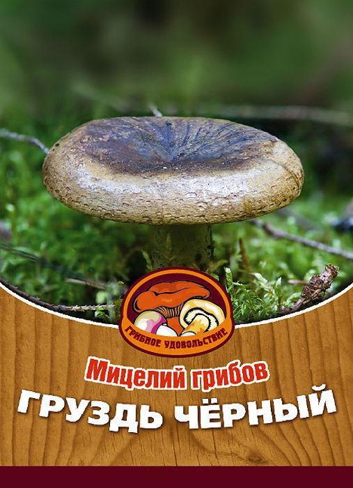 Мицелий грибов Груздь черный, субстрат. Объем 60 мл10025Груздь черный - вкусный высококачественный гриб, который используется для засолки и маринования. Благодаря мицелию грибов Груздь черный вы без труда сможете вырастить любимые грибы у себя в саду или дома. И уже на следующий год после посадки у вас появится первый урожай грибов. За один год можно собрать от 5 до 15 грибов с одного дерева. Для того чтобы вырастить грибы вам понадобится: мицелий Грибное удовольствие, дерево лиственной породы (не моложе 4 лет), грунт для комнатных растений с высоким содержанием торфа, увлажненные опилки лиственных пород дерева, лопата, мох, листовой опад. Благоприятное время для посадки мицелия Груздь черный - круглый год.Плодоносят мицелии в среднем от 3 до 5 лет, в зависимости от сорта грибов. Характеристики:Материал:субстрат. Размер упаковки:11 см х 15,5 см. Объем:60 мл. Артикул:10025.