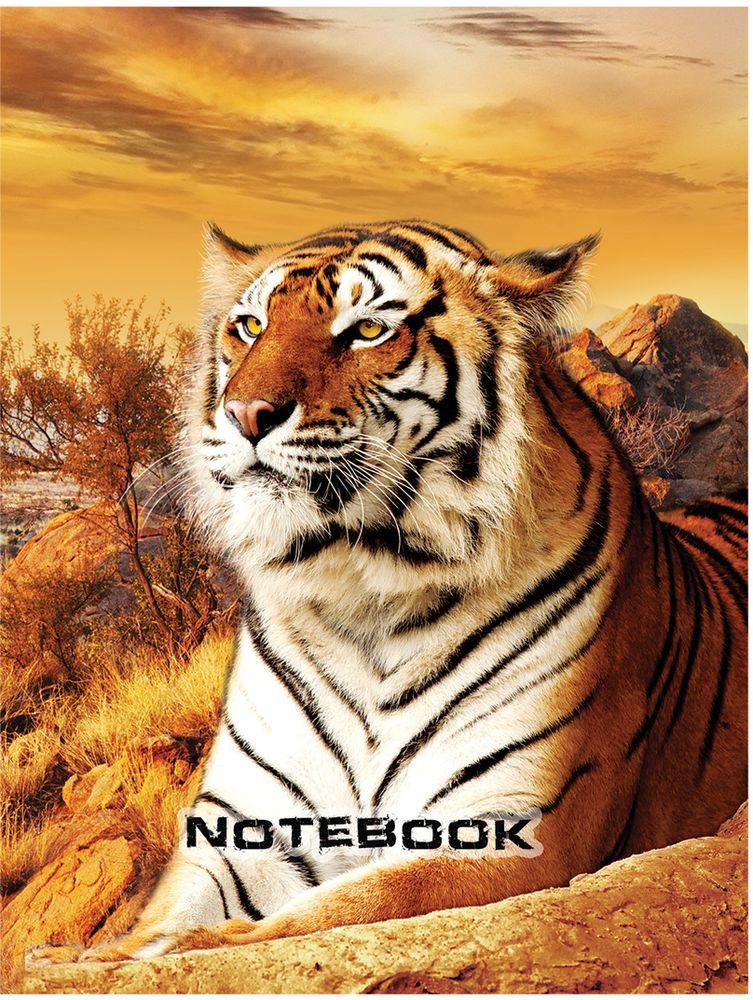 Staff Блокнот Тигровый 80 листов формат A6 ada staff 4
