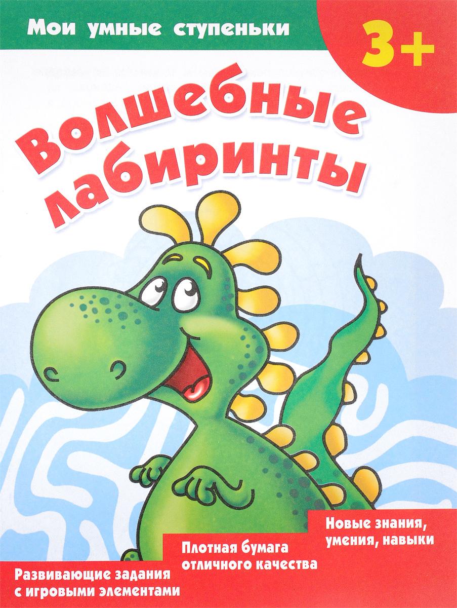 В. Г. Дмитриева Волшебные лабиринты ISBN: 978-5-17-103698-0